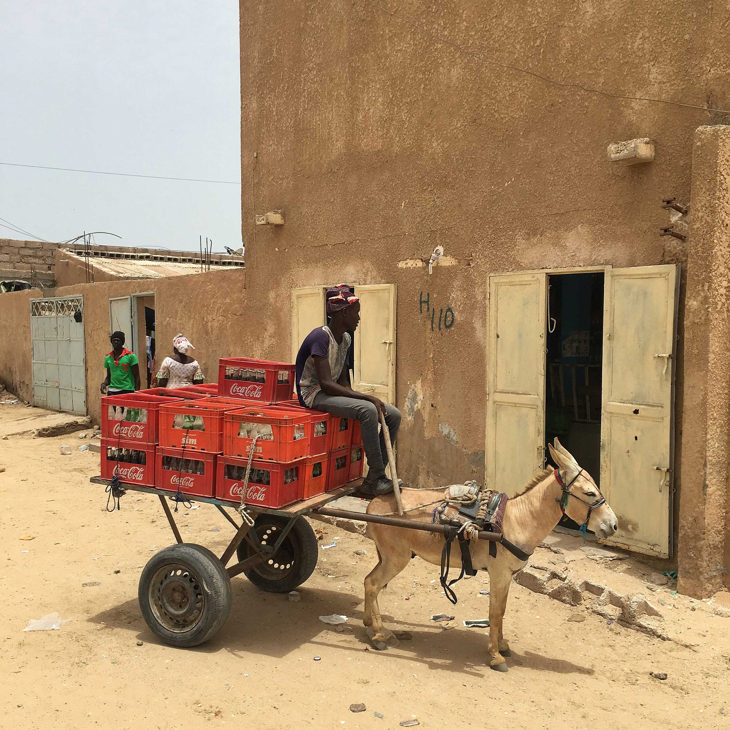 Aziz makes [f500link]Coca-Cola[/f500link] deliveries with his donkey in Nouakchott, Mauritania.