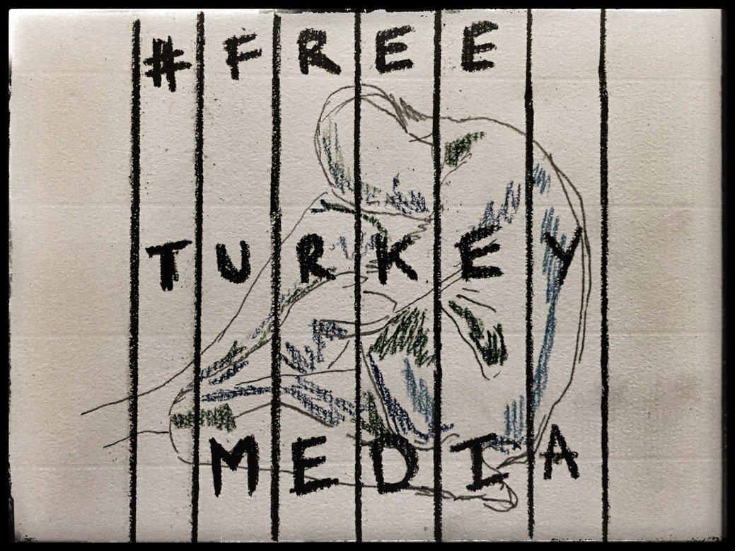 A cartoon for Amnesty International's FreeTurkeyMedia campaign by cartoonist Ian Overton