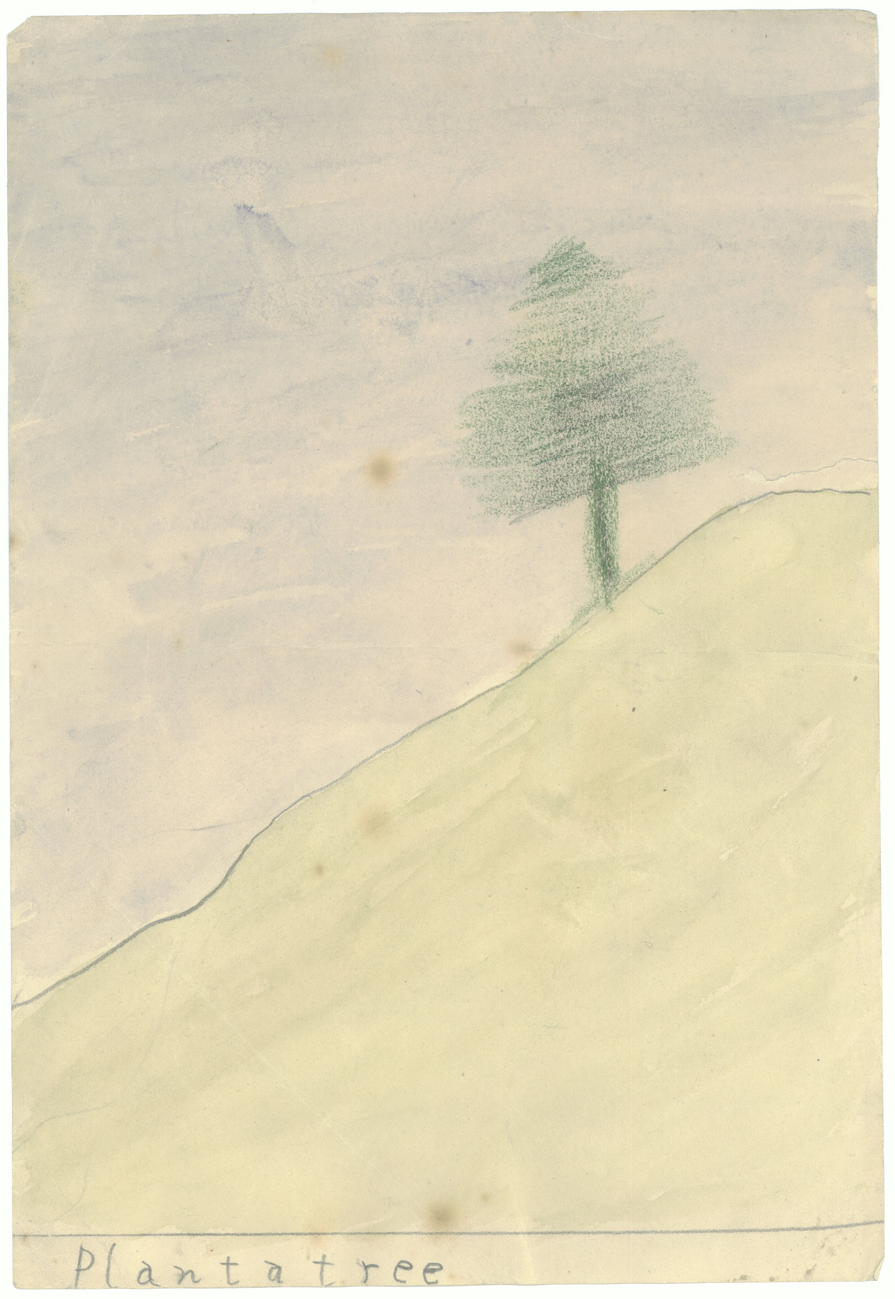 Plant a Tree,  crayon drawing by John F. Kennedy, ca. 1929-1930.