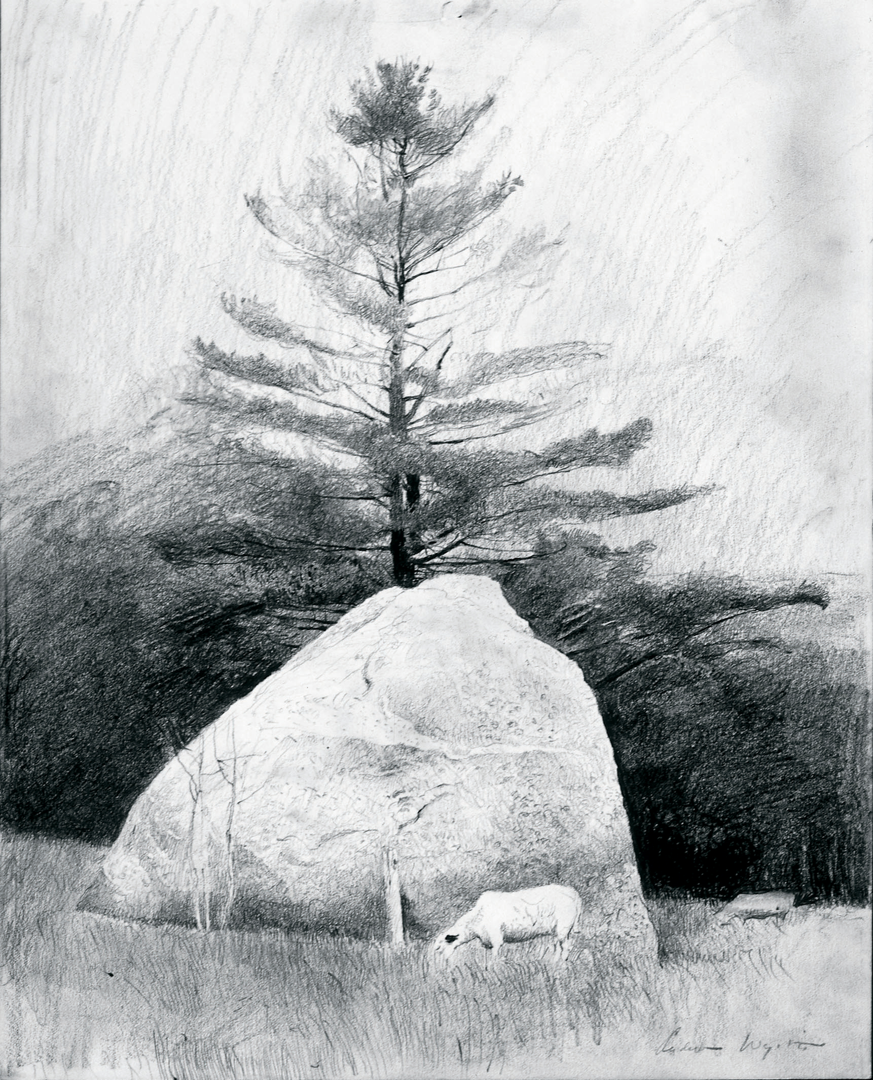 Far From Needham Study, 1966 pencil on paper from The Andrew and Betsy Wyeth Collection.