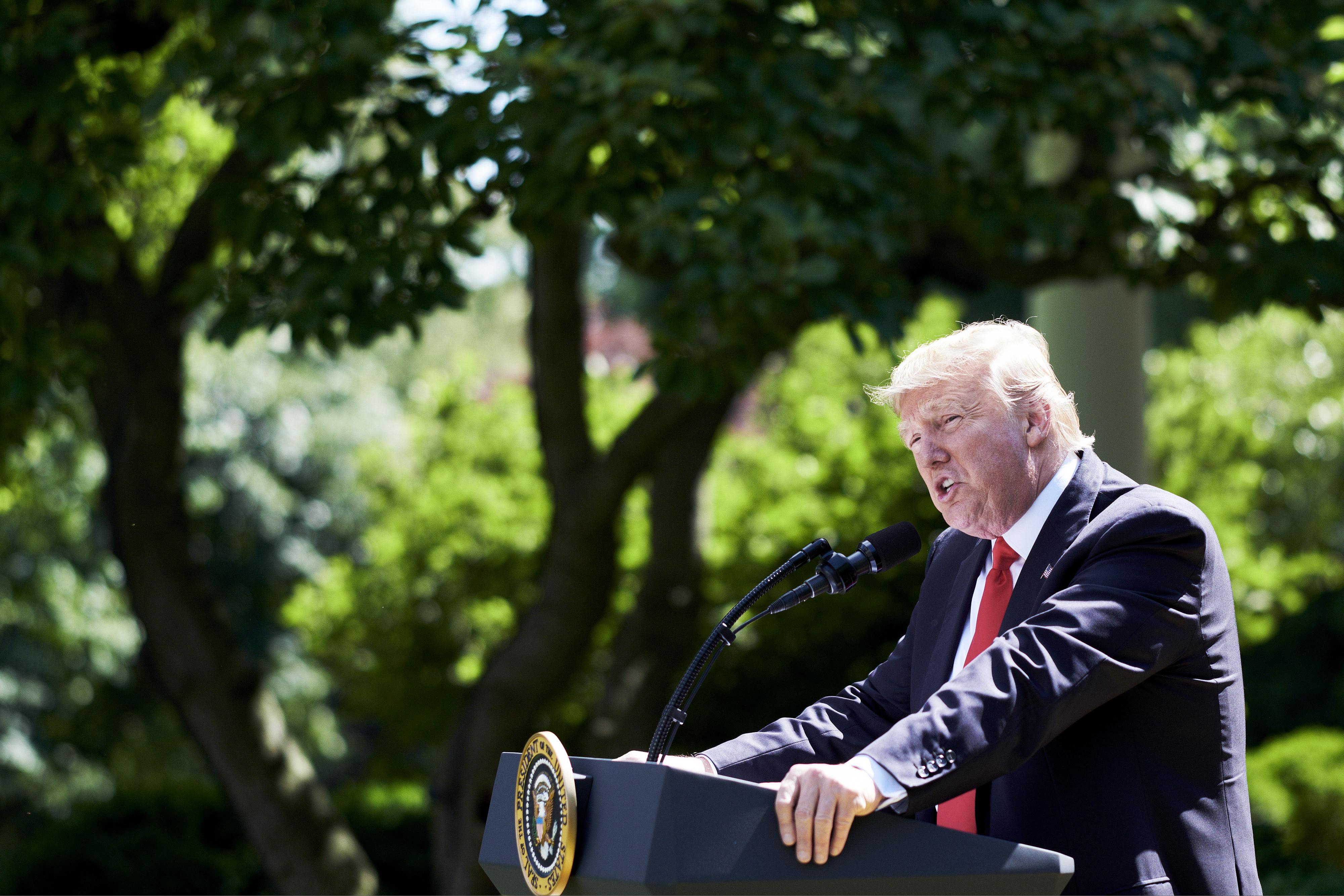 President Trump speaks during an announcement in the Rose Garden of the White House in Washington, D.C., U.S., on June 1, 2017.