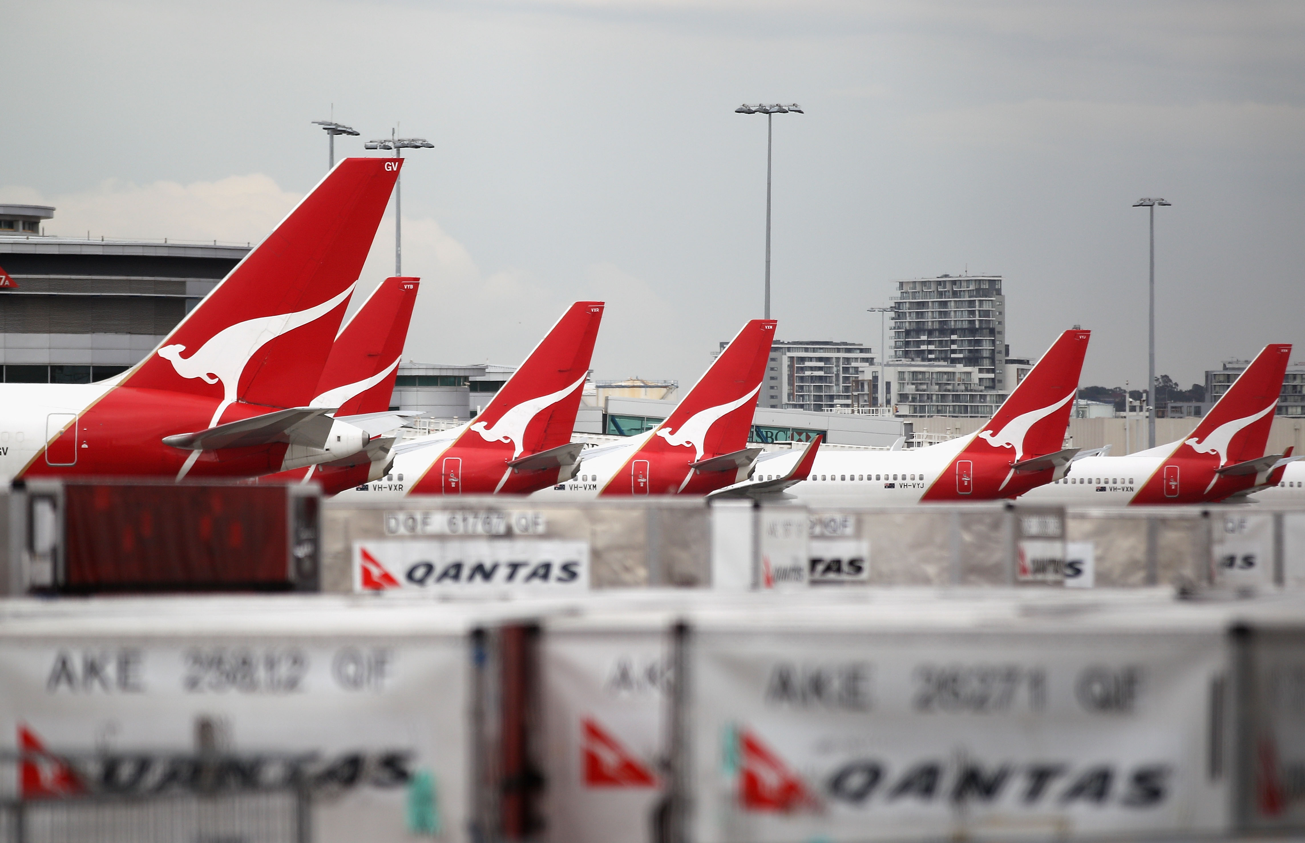 Qantas jets are seen at the Qantas Domestic Terminal on October 30, 2011 in Sydney, Australia.