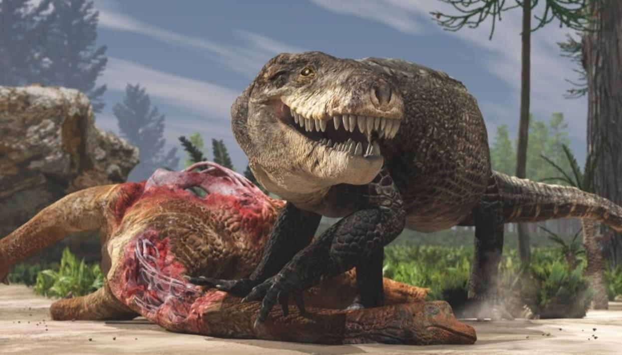 An artist's rendering shows Razana and its giant teeth eating the carcass of a plant-eating dinosaur in the Middle Jurassic of Madagascar.