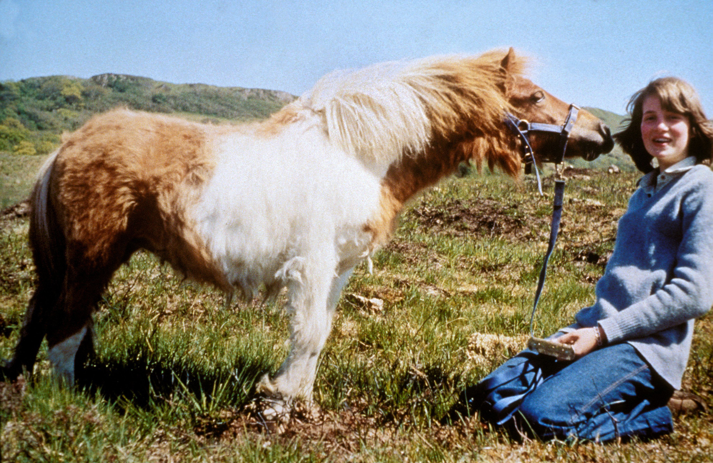 Lady Diana, playing with a pony in the countryside in England in the mid-1970s.