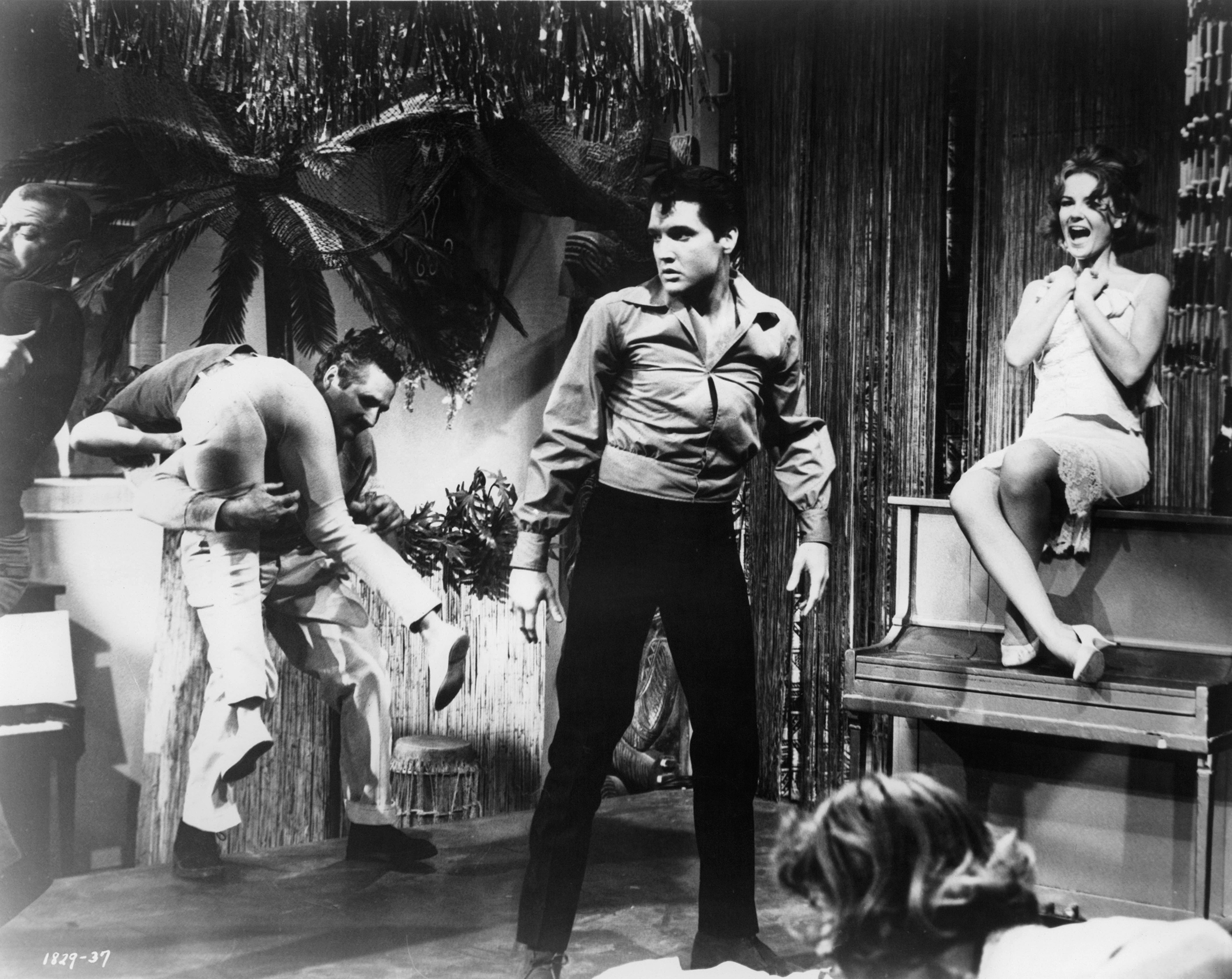 Girl Happy : 1965, Elvis comes to the rescue when a fight erupts after Shelley Fabares (seated on piano) tries to do a strip-tease act.
