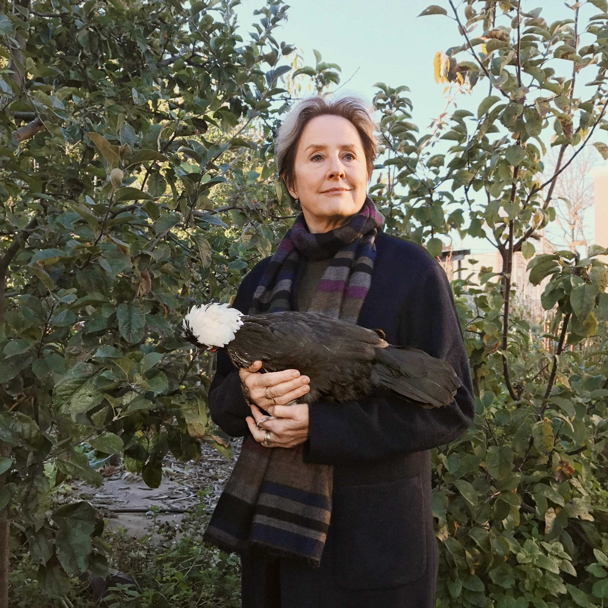 Portrait of Alice Waters, photographed at the Edible Schoolyard in P.S. 216 in New York City, November 7, 2016.