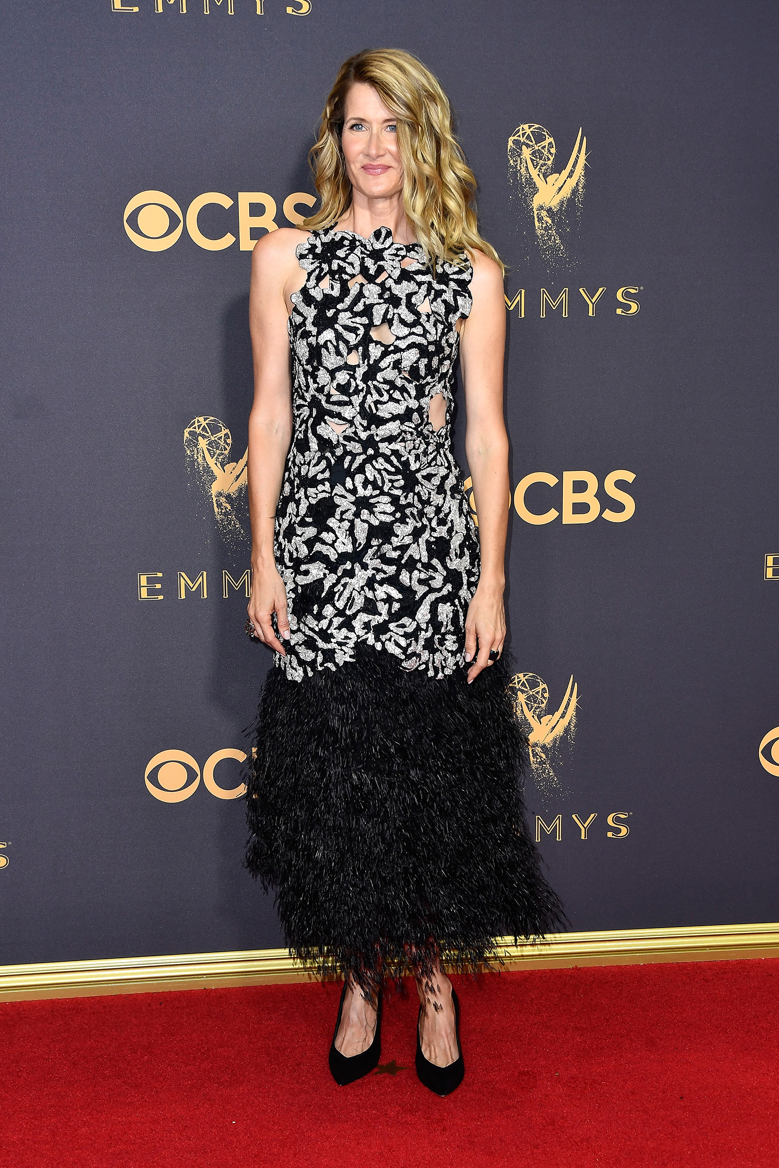 Actor Laura Dern attends the 69th Annual Primetime Emmy Awards at Microsoft Theater on September 17, 2017 in Los Angeles, California.