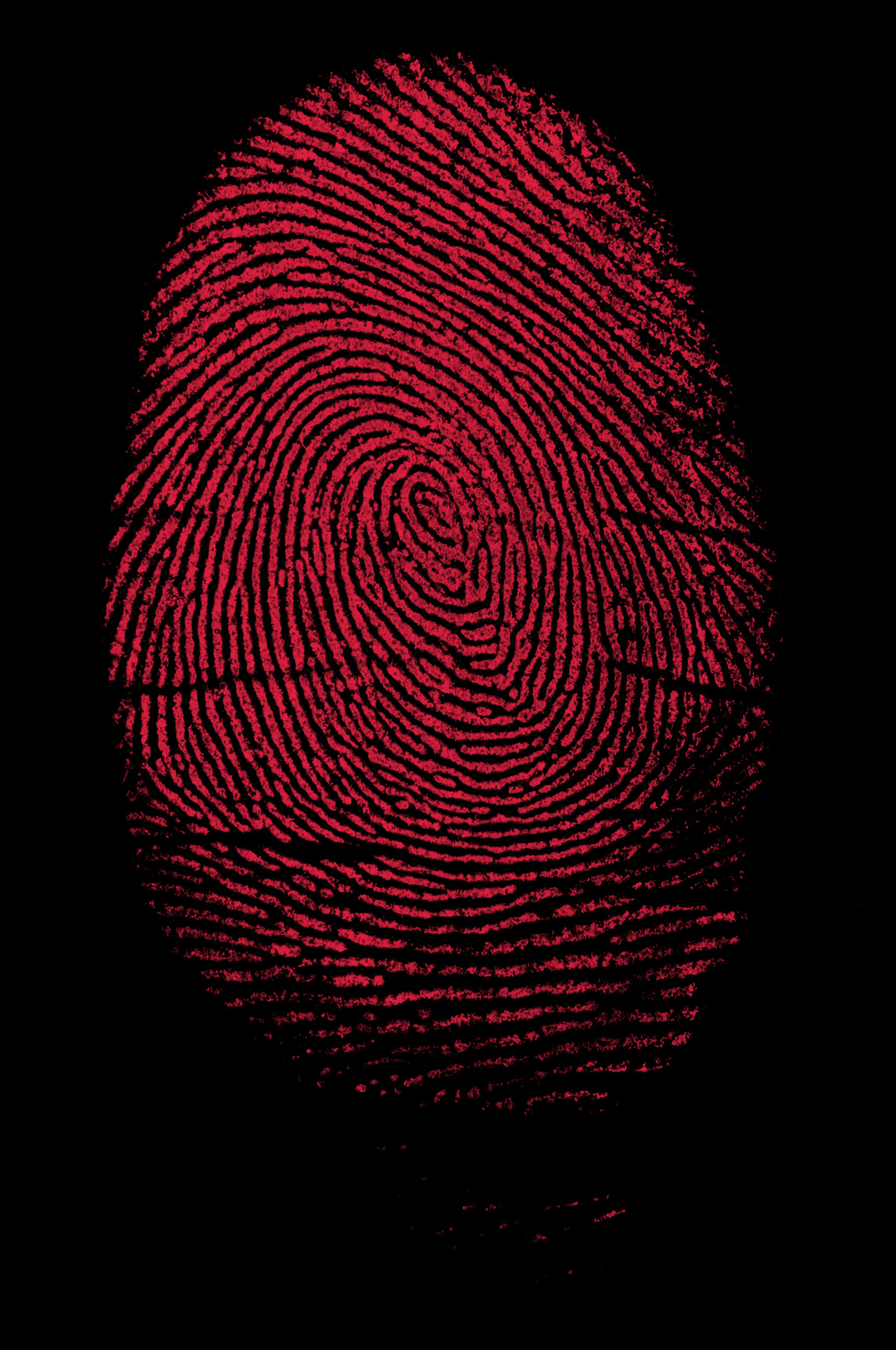Biometric authentication is being billed as a better, safer alternative to passwords and pass codes