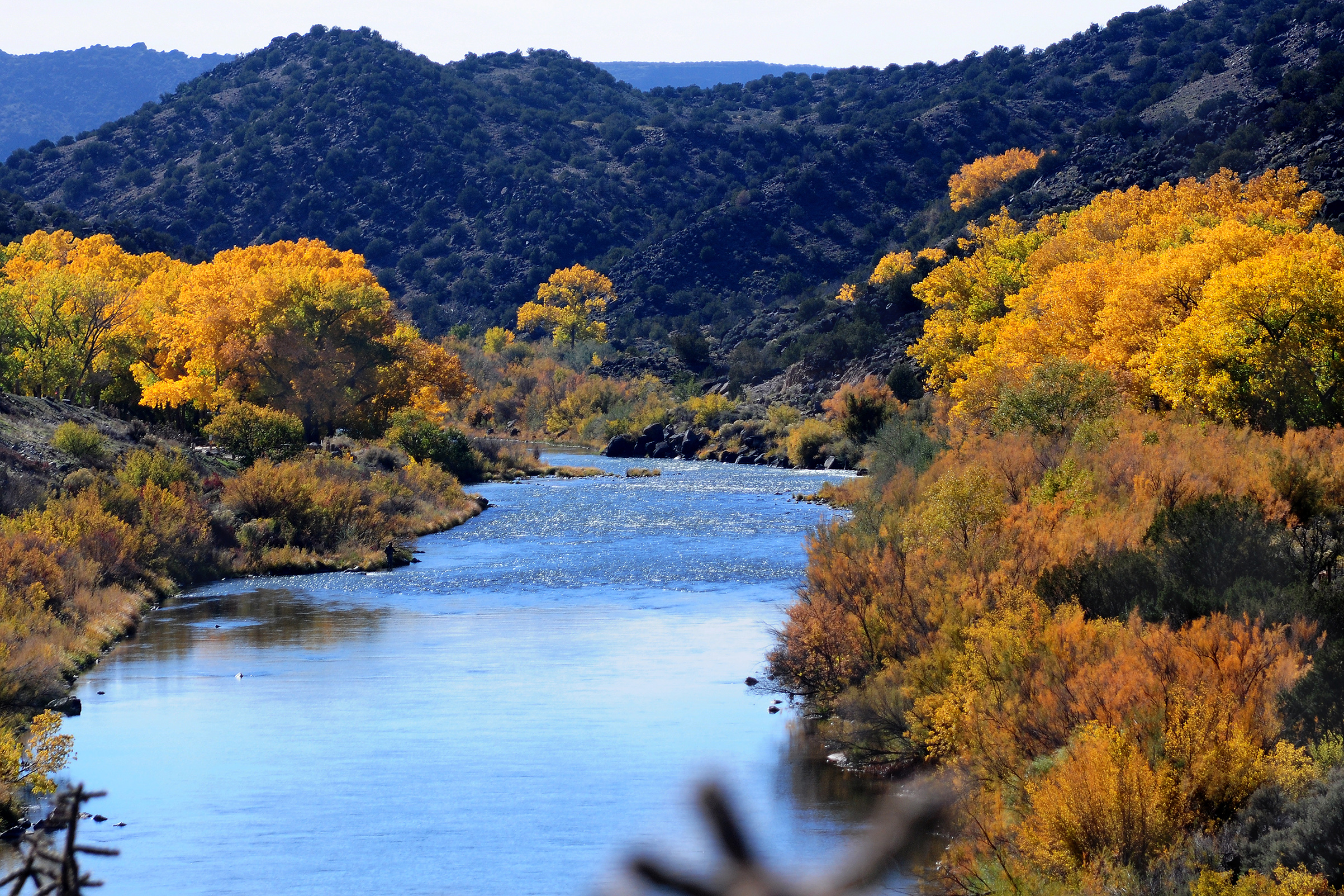 The Rio Grande River flows past cottonwood trees near Taos, New Mexico.