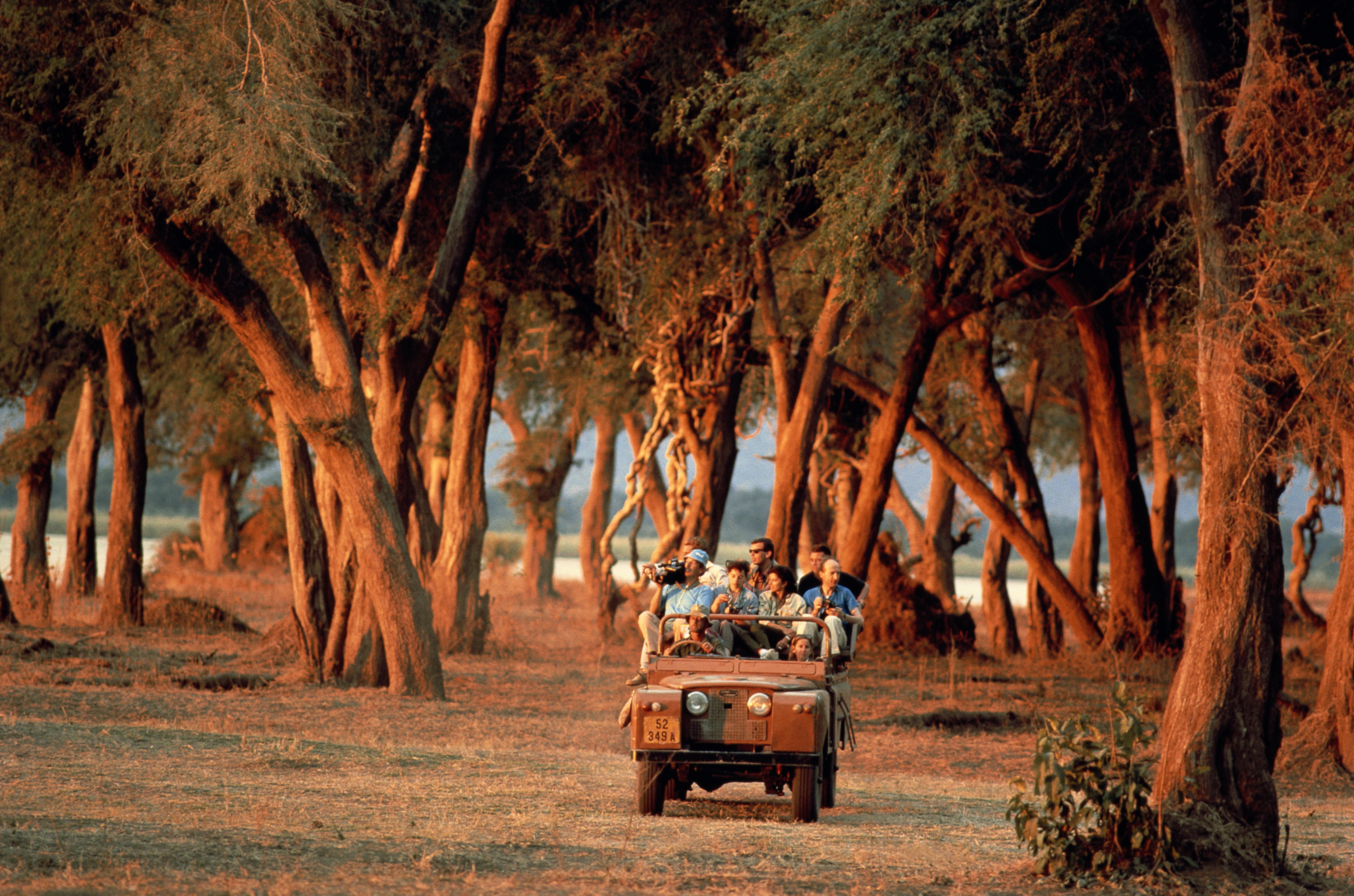Zimbabwe, Zambezi flood plains, tourists in safari vehicle