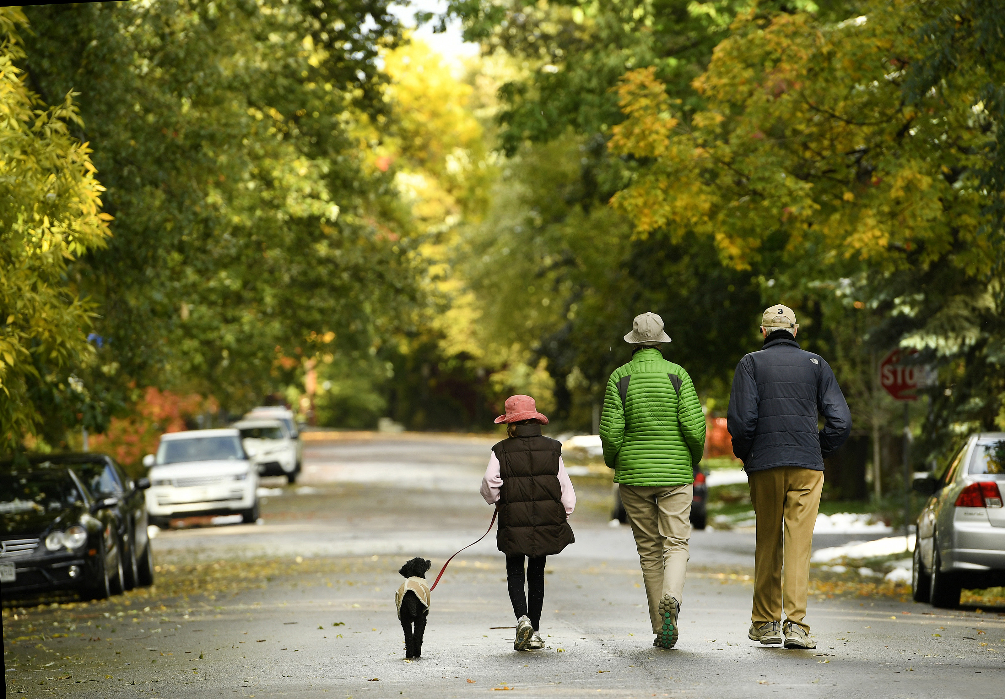 Celeste Bizzarro-Parkin, 8, left, walks with her grand aunt Anne Guthrie, grand uncle Tom Woodard, right, and her dog Nollie as they enjoy a cool afternoon walk under colorful trees on Mapleton Hill on a wintery fall day on October 9, 2017 in Boulder, Colo.