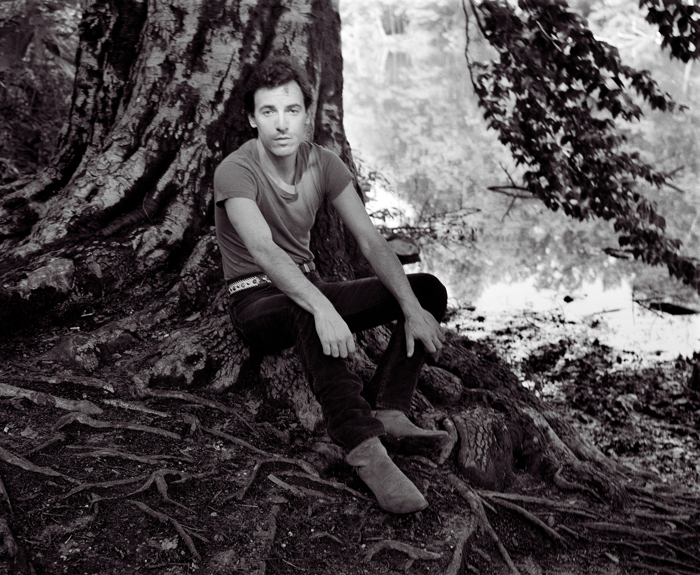 Bruce Springsteen sitting under a tree in 1982.