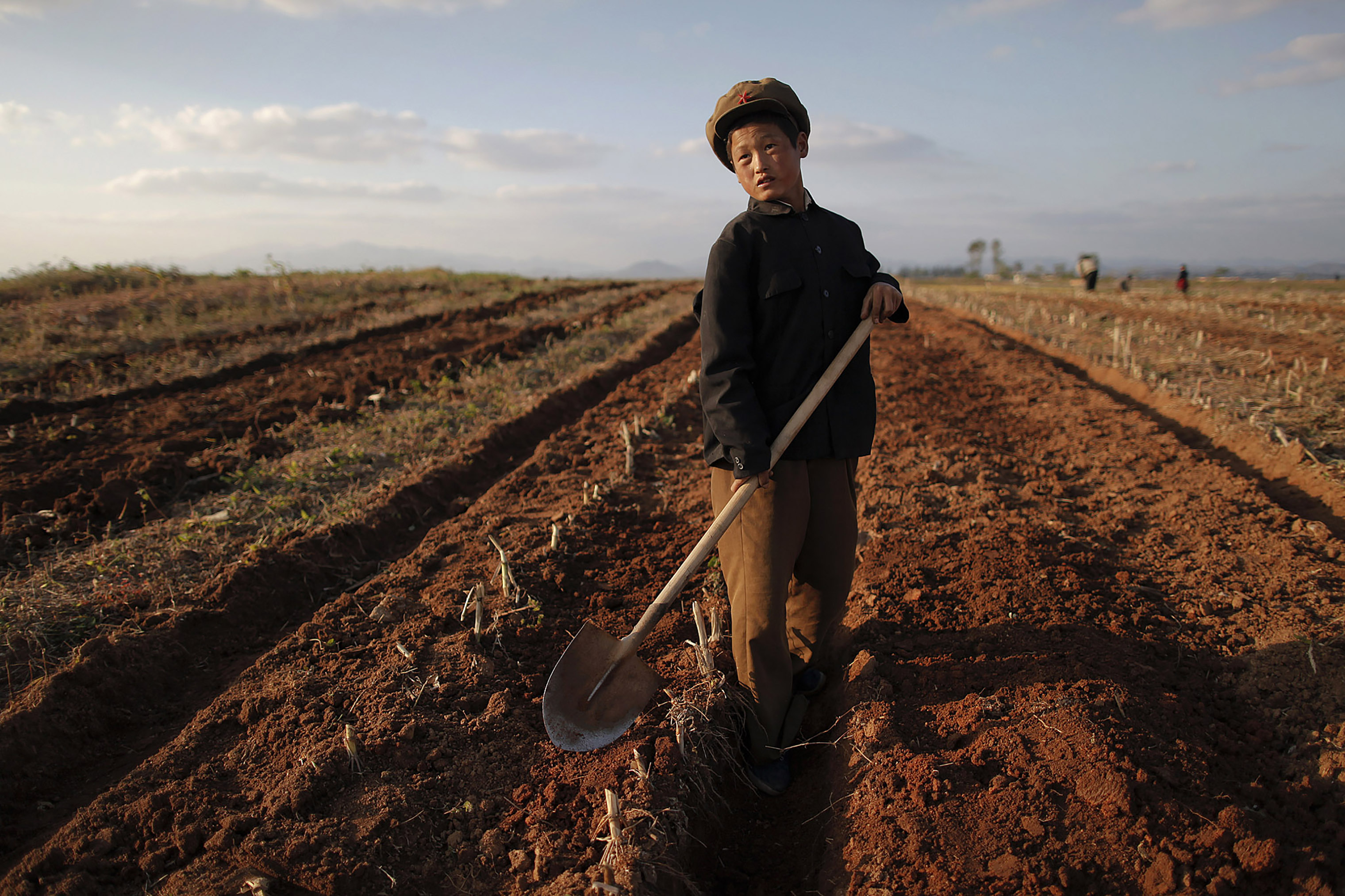 A boy works in a field of a collective farm in the area damaged by summer floods and typhoons in South Hwanghae Province, western North Korea, on Sept. 30, 2011.