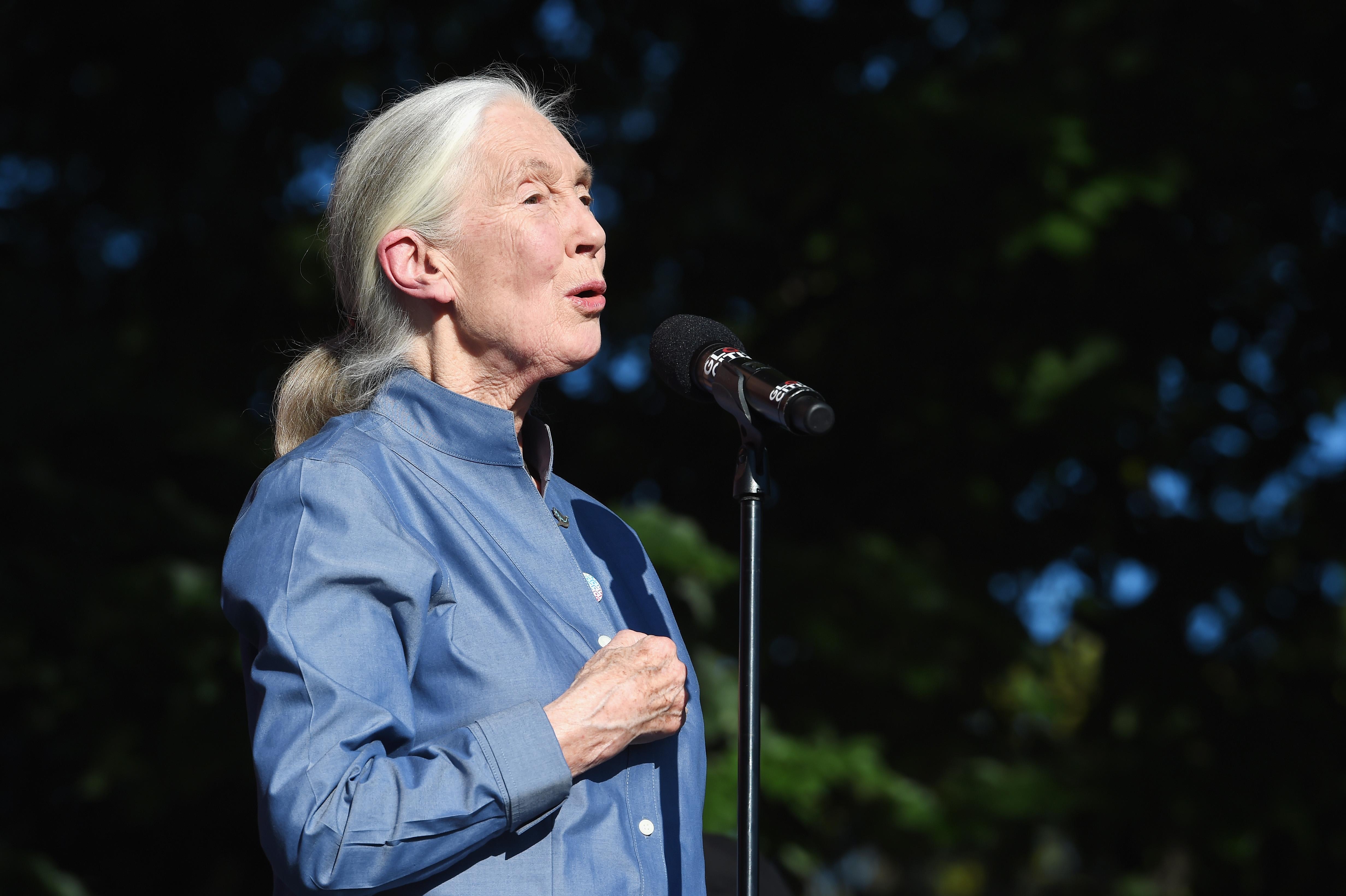 Jane Goodall speaks onstage during Global Citizen Festival 2017 on Sept. 23 in New York City.