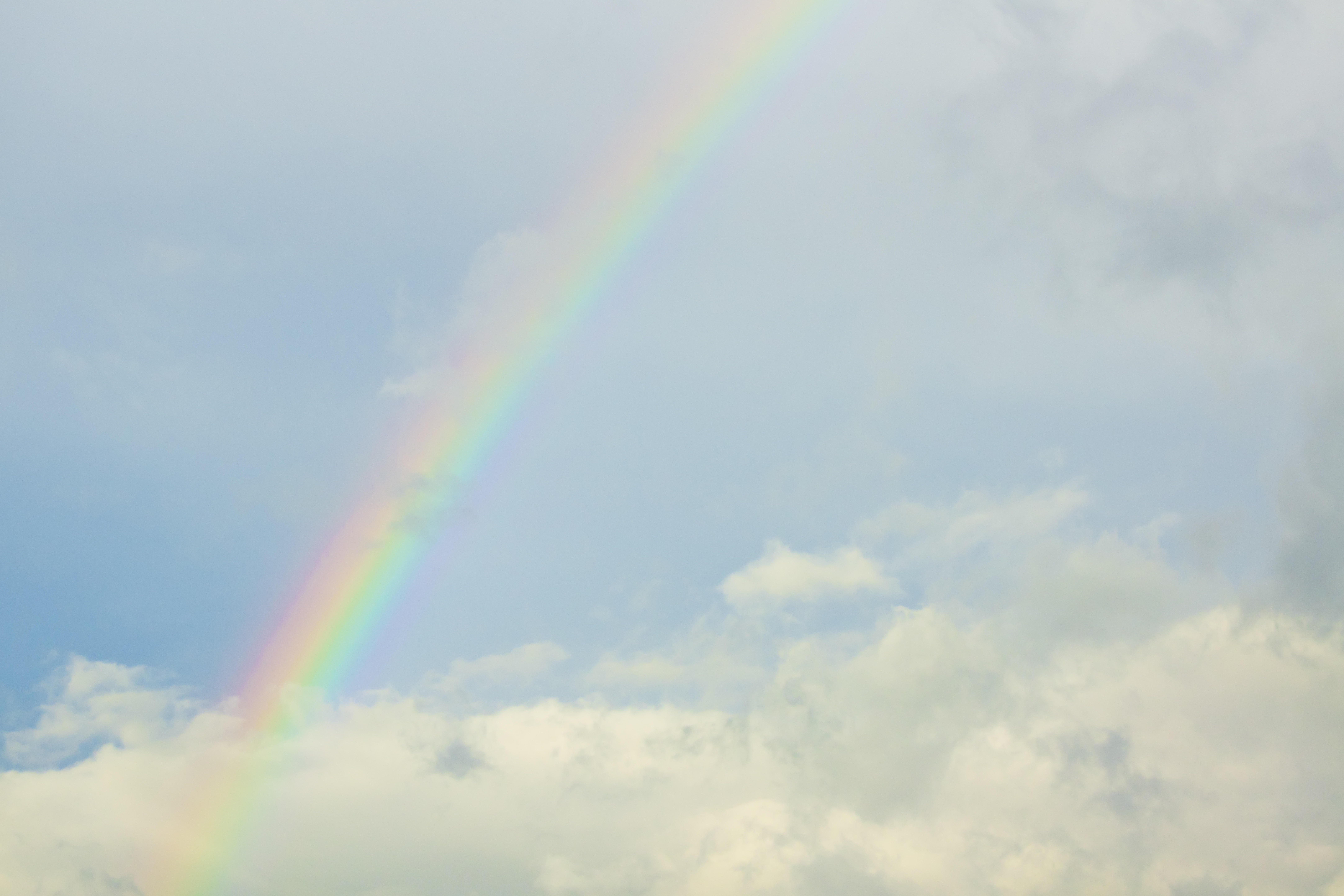 A rainbow seen on a sunny afternoon following rain.