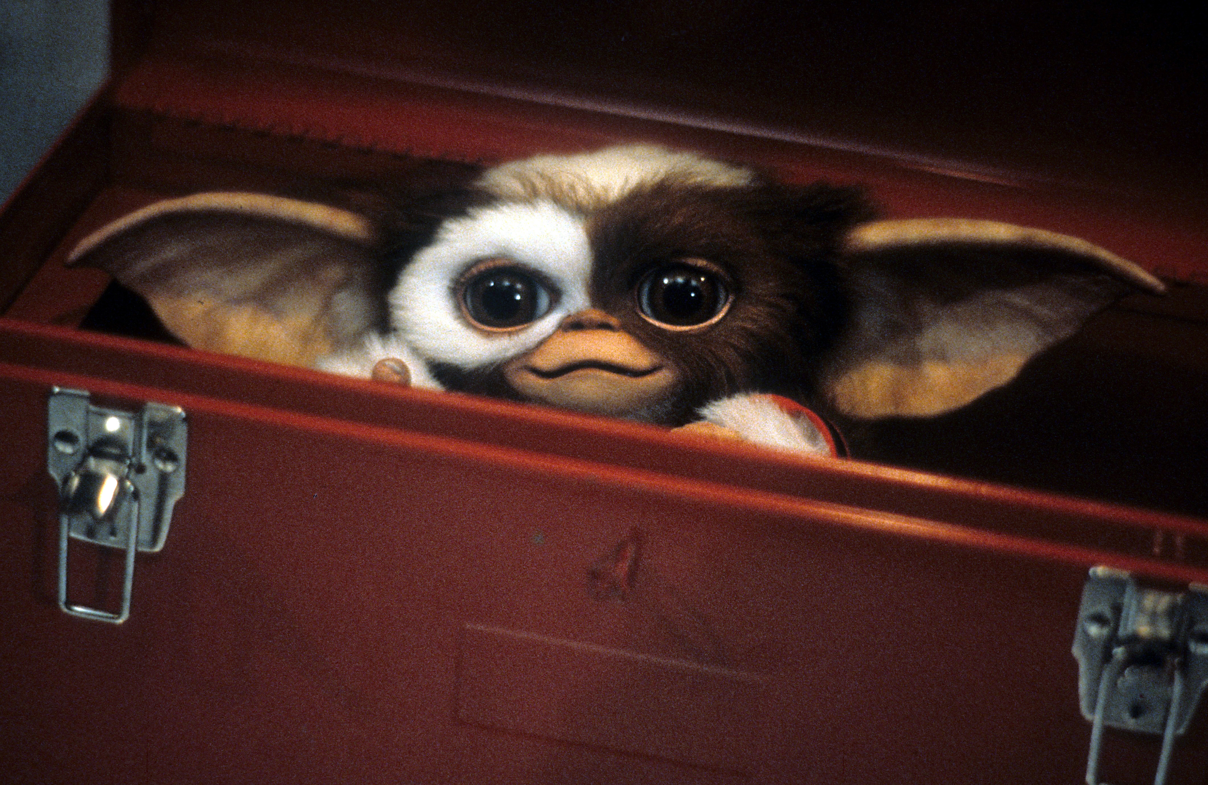 A scene from the film 'Gremlins', 1984.