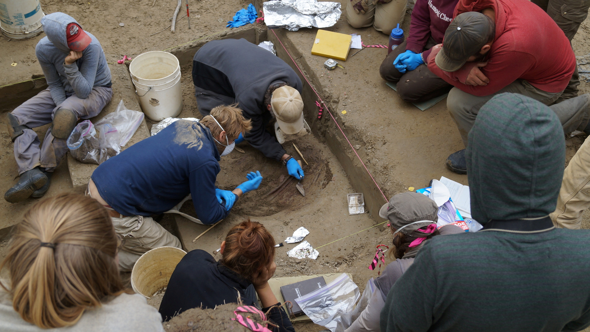 Scientists at the 11,500-year-old remains of two infant girls at the Upward Sun River in Alaska's Tanana River Valley near Fairbanks
