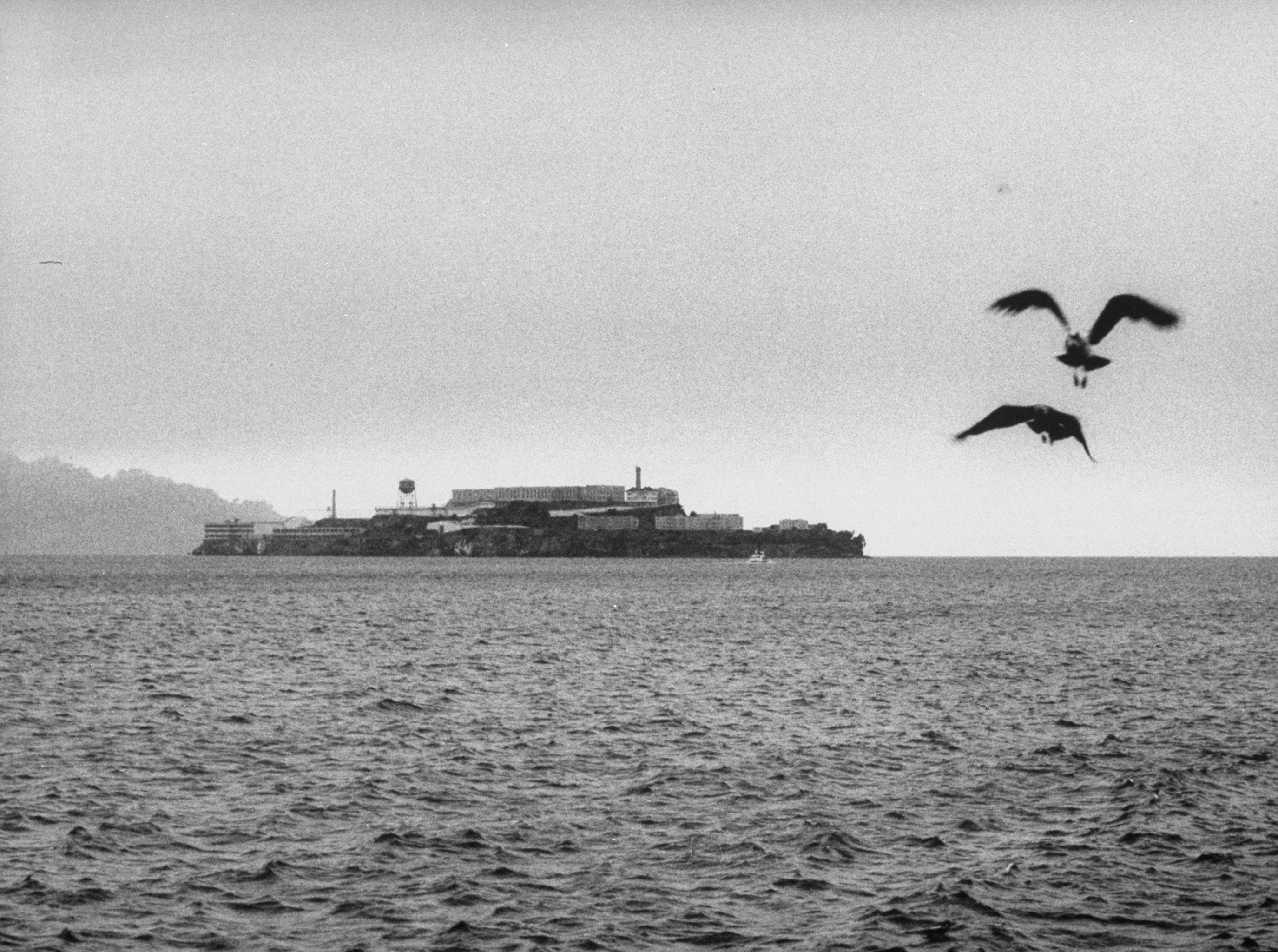 Picture of Alcatraz prison, after the June 1962 escape.