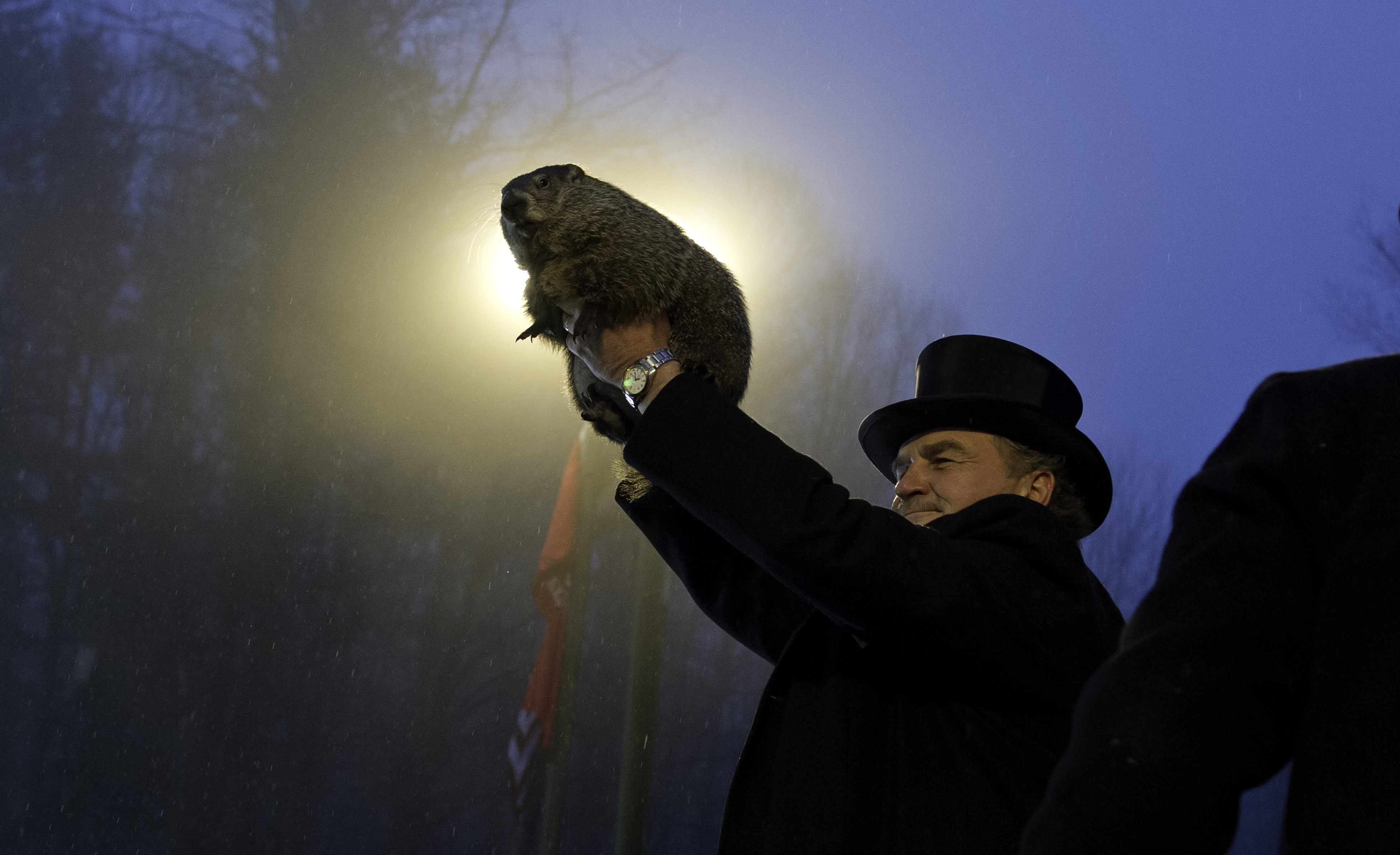 Groundhog handler John Griffiths holds Punxsutawney Phil after he saw his shadow predicting six more weeks of winter during 128th annual Groundhog Day festivities on February 2, 2014 in Punxsutawney, Pennsylvania. Groundhog Day is a popular tradition in the United States and Canada. A smaller than usual crowd this year of less than 25,000 people spent a night of revelry awaiting the sunrise and the groundhog's exit from his winter den. If Punxsutawney Phil sees his shadow he regards it as an omen of six more weeks of bad weather and returns to his den. Early spring arrives if he does not see his shadow, causing Phil to remain above ground.