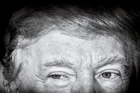 very-stable-genius, donald trump, president trump, tweets