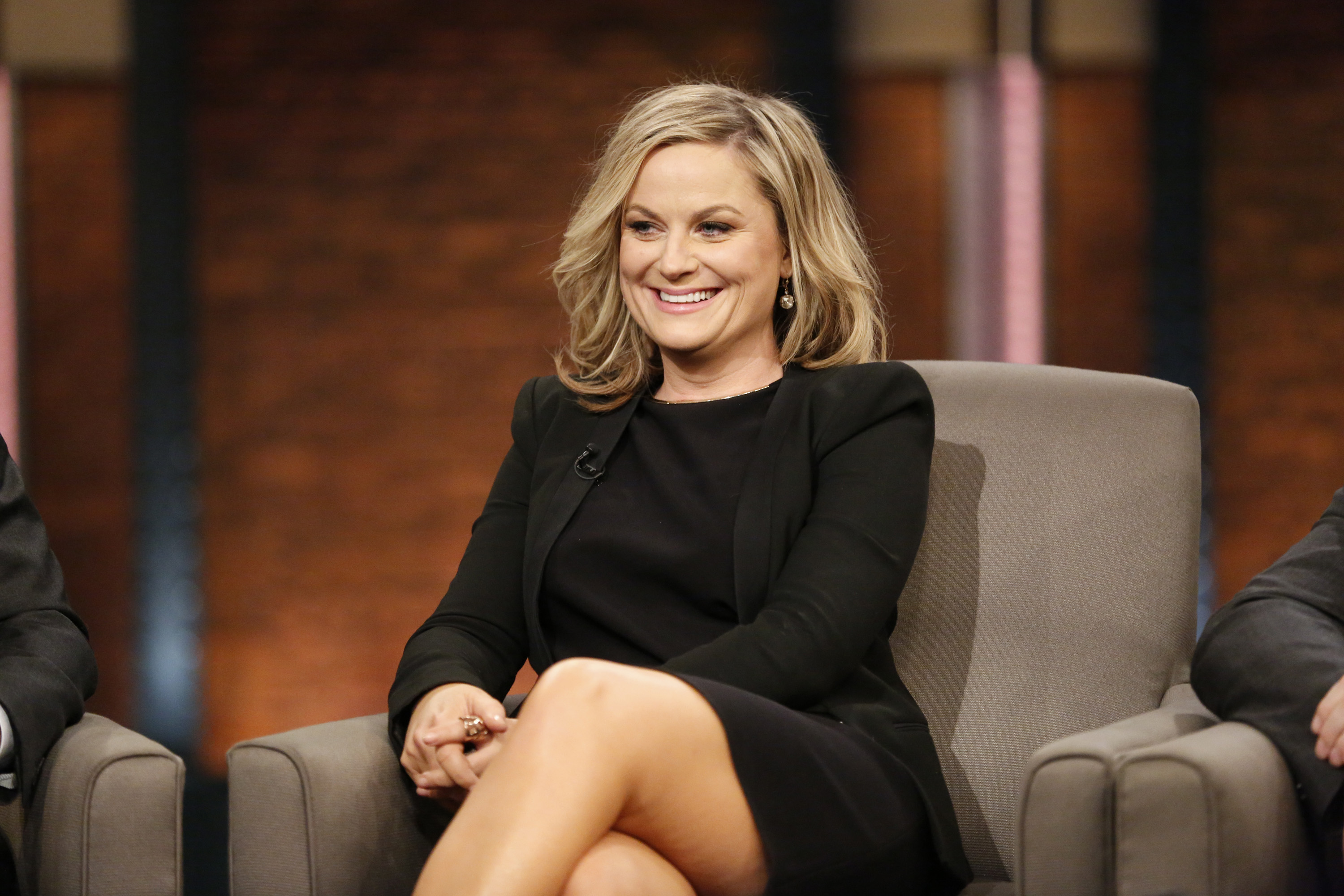 Pictured: Amy Poehler of 'Parks and Recreation' during an interview on February 24, 2015.