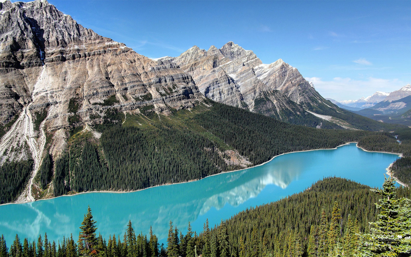 "Paquette said he was taken aback by the color of Peyto Lake in Banff National Park.                               ""It's the bluest lake you've ever seen because it's so high up,"" he said.                               ""The higher up you are looking down on it, the more blue it seems, and everything just looks so pure,  Paquette said.  Even though you're surrounded by all the tourists who come to see the park's beauty, everything around you here still looks like it's never been touched and that it's a rugged landscape humans don't belong in."