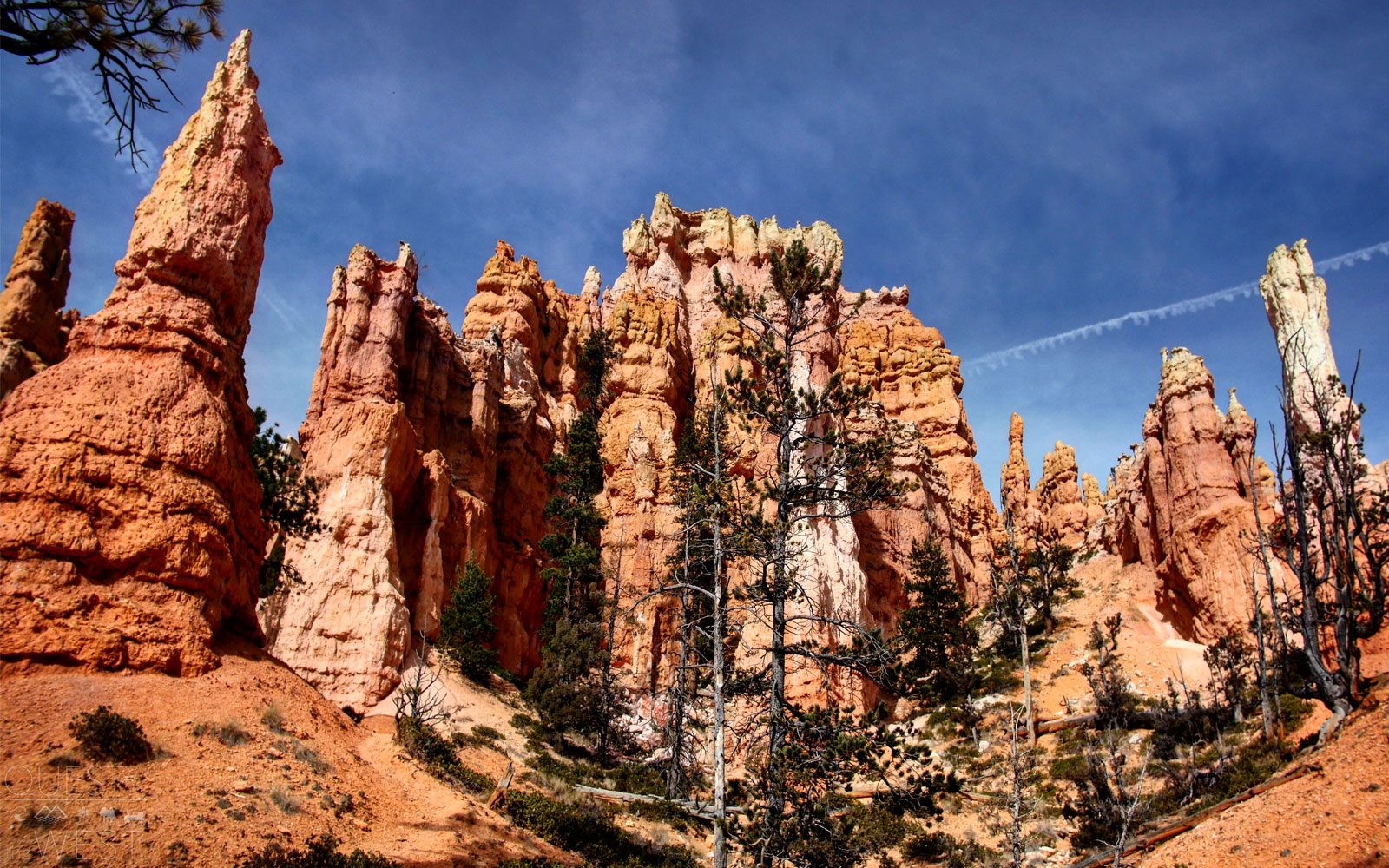 "One of Paquette's top spots in Bryce Canyon National Park is the Queen's Garden Trail, where you'll spot a variety of the area's famed hoodoos (tall and slender rock spires that jut out from the bottom of arid basins). One of the hoodoos at the end of the trail even looks like Queen Victoria, making it appear as though she is overlooking the garden.                               ""When you walk through, it feels like you're in a giant castle as you see all these rock formations around you,"" Paquette said of the site.                               The trail is a simple one, according to park representatives, making it an easy way to start exploring the park."