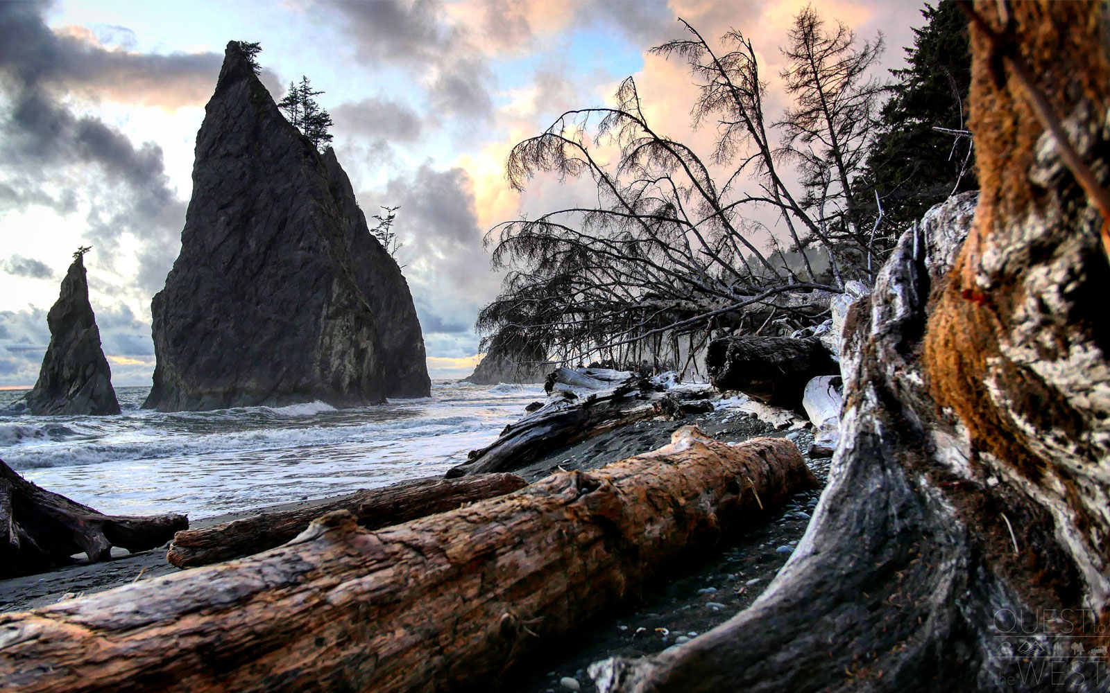 "Olympic National Park offers its visitors three different ecosystems — rainforest terrain, mountain territories, and coastal beaches — within one park.                               One of Paquette's favorites was Rialto Beach, where massive driftwood decorates the landscape.                               ""You would see these massive trees that had drifted onto the beach years ago and have been there ever since, going all the way down the shores,"" Paquette said."