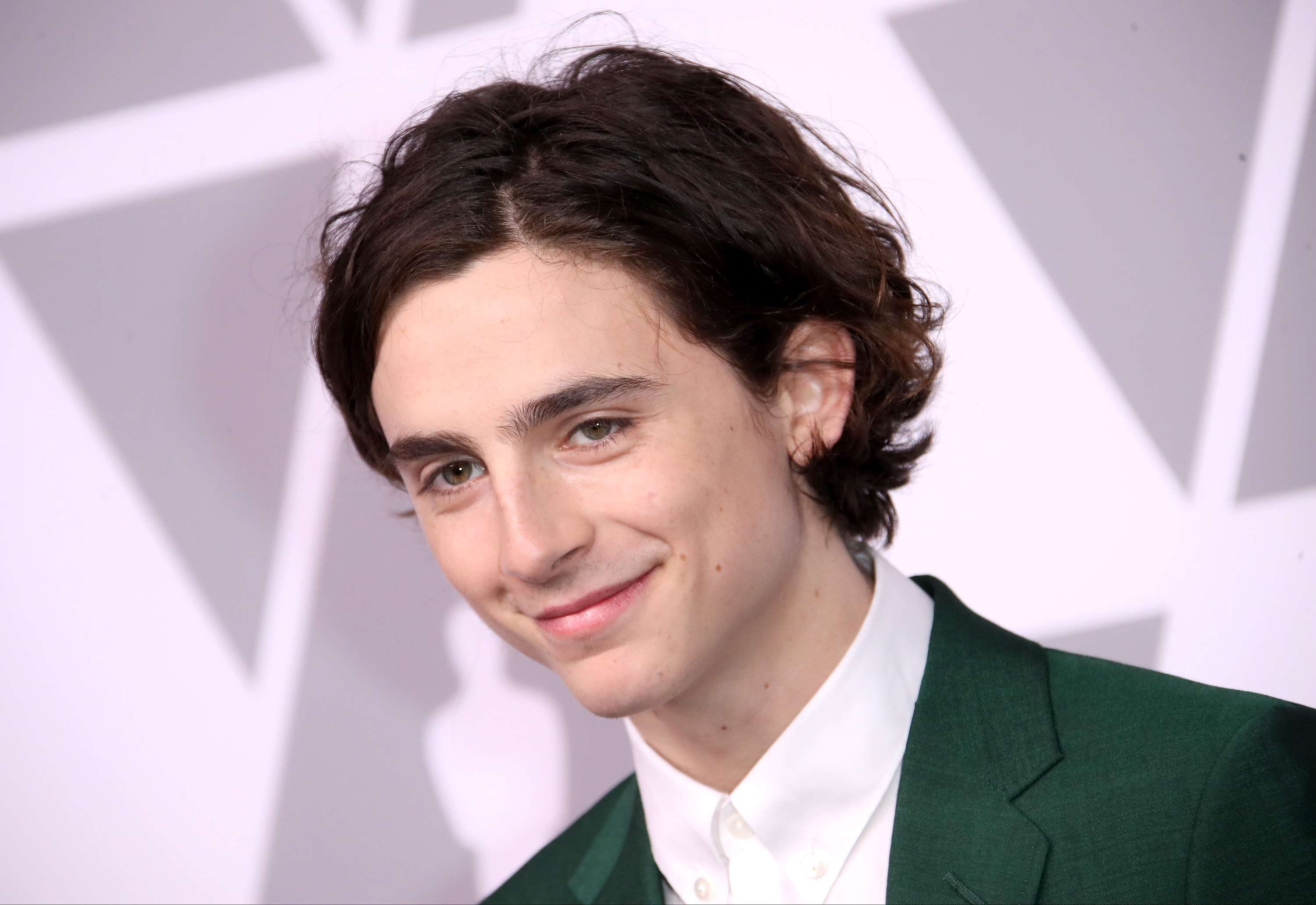 Actor Timothée Chalamet attends the 90th Annual Academy Awards Nominee Luncheon at The Beverly Hilton Hotel on February 5, 2018 in Beverly Hills, California.