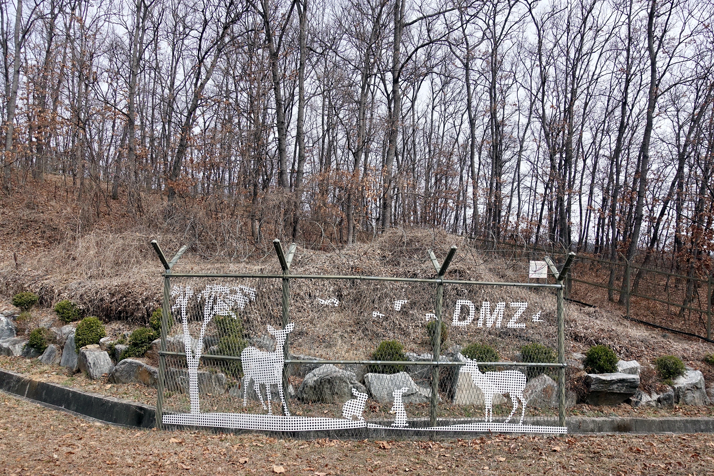 """A decorated fence next to a suspected minefield inside the DMZ on March 21; a nearby sign warns not to enter, or a person could """"get killed instantly"""""""