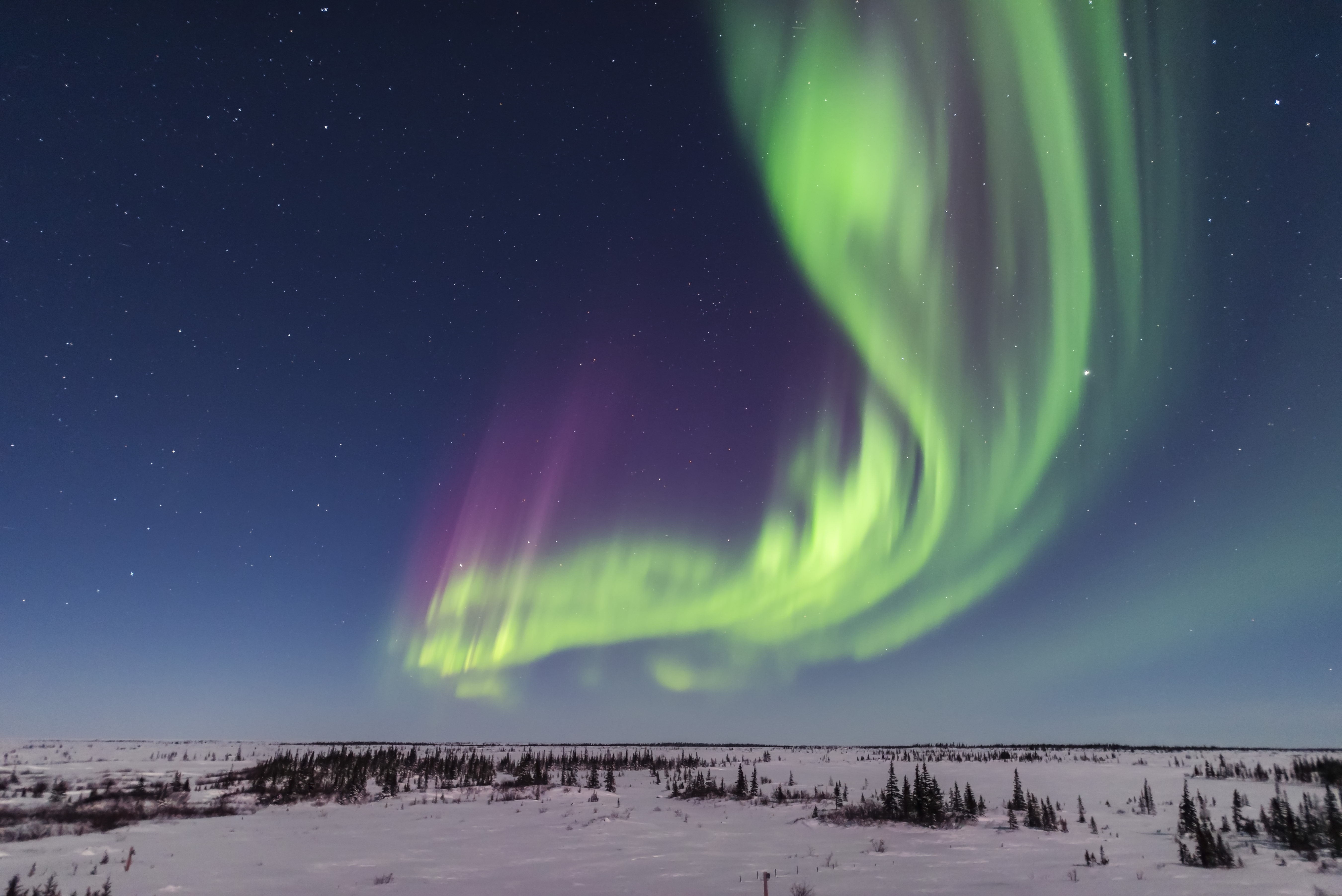 A superb display of aurora borealis seen on March 14, 2016 when it reached Level 5 storm levels