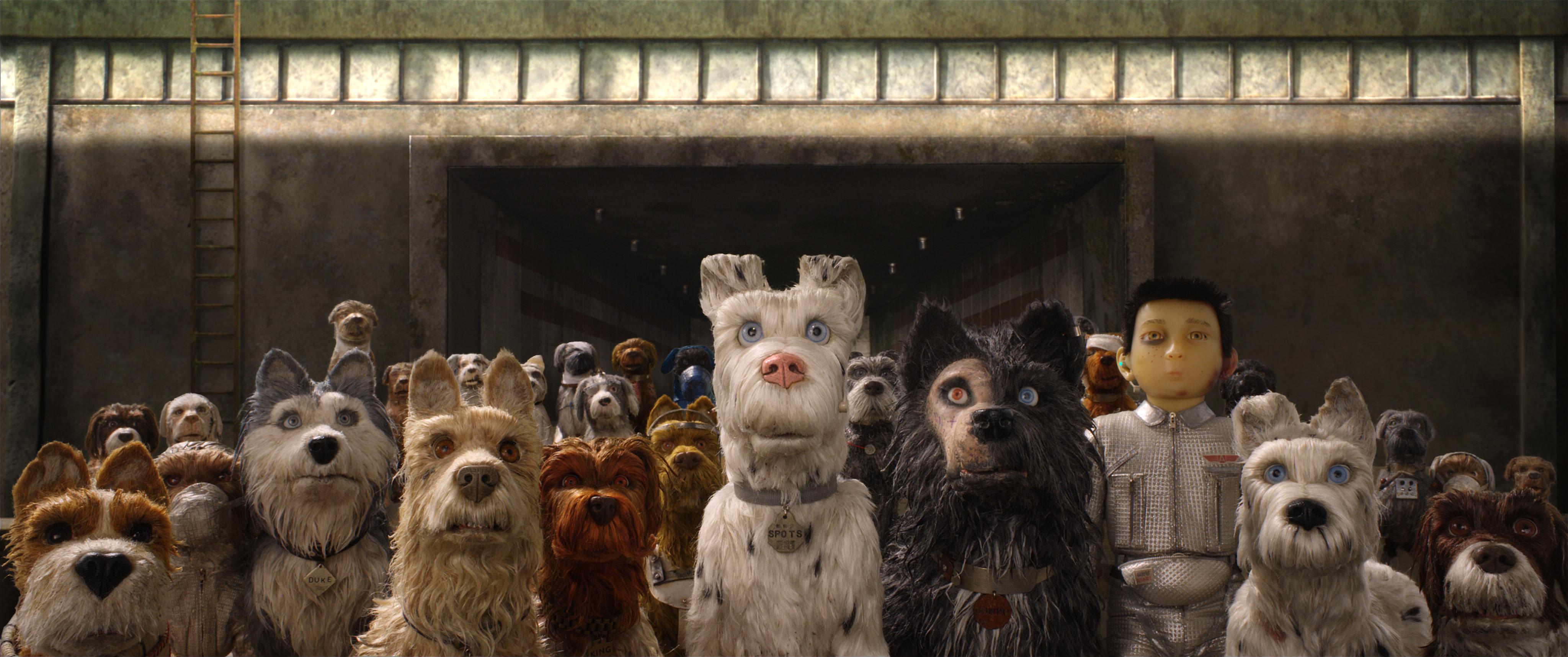 Bill Murray as 'Boss,' Jeff Goldblum as 'Duke,' Edward Norton as 'Rex,' Bob Balaban as 'King,' Liev Shreiber as 'Spots,' Harvey Keitel as 'Gondo,' Koyu Rankin as 'Atari Kobayashi' and Bryan Cranston as 'Chief' in Wes Anderson's Isle of Dogs.