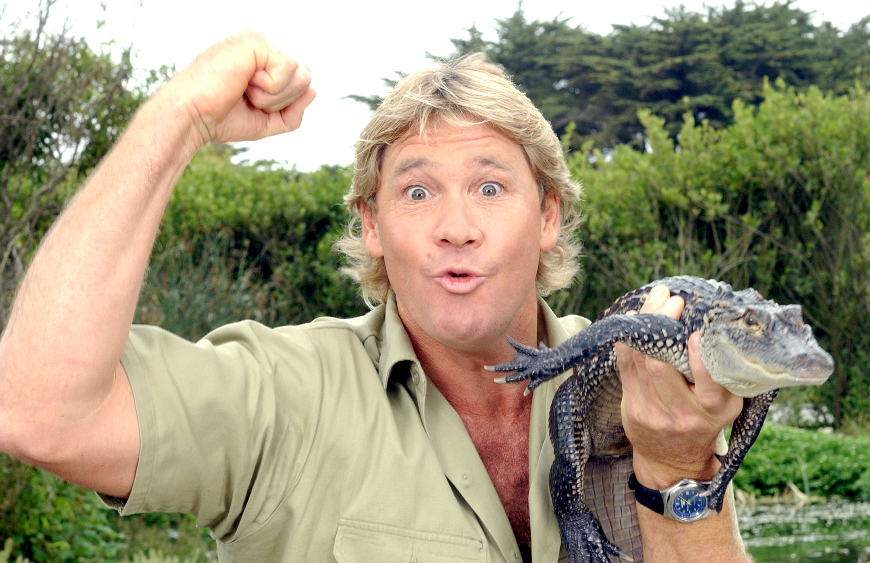 'The Crocodile Hunter', Steve Irwin, poses with a three foot long alligator at the San Francisco Zoo in San Francisco, California on June 26, 2002.