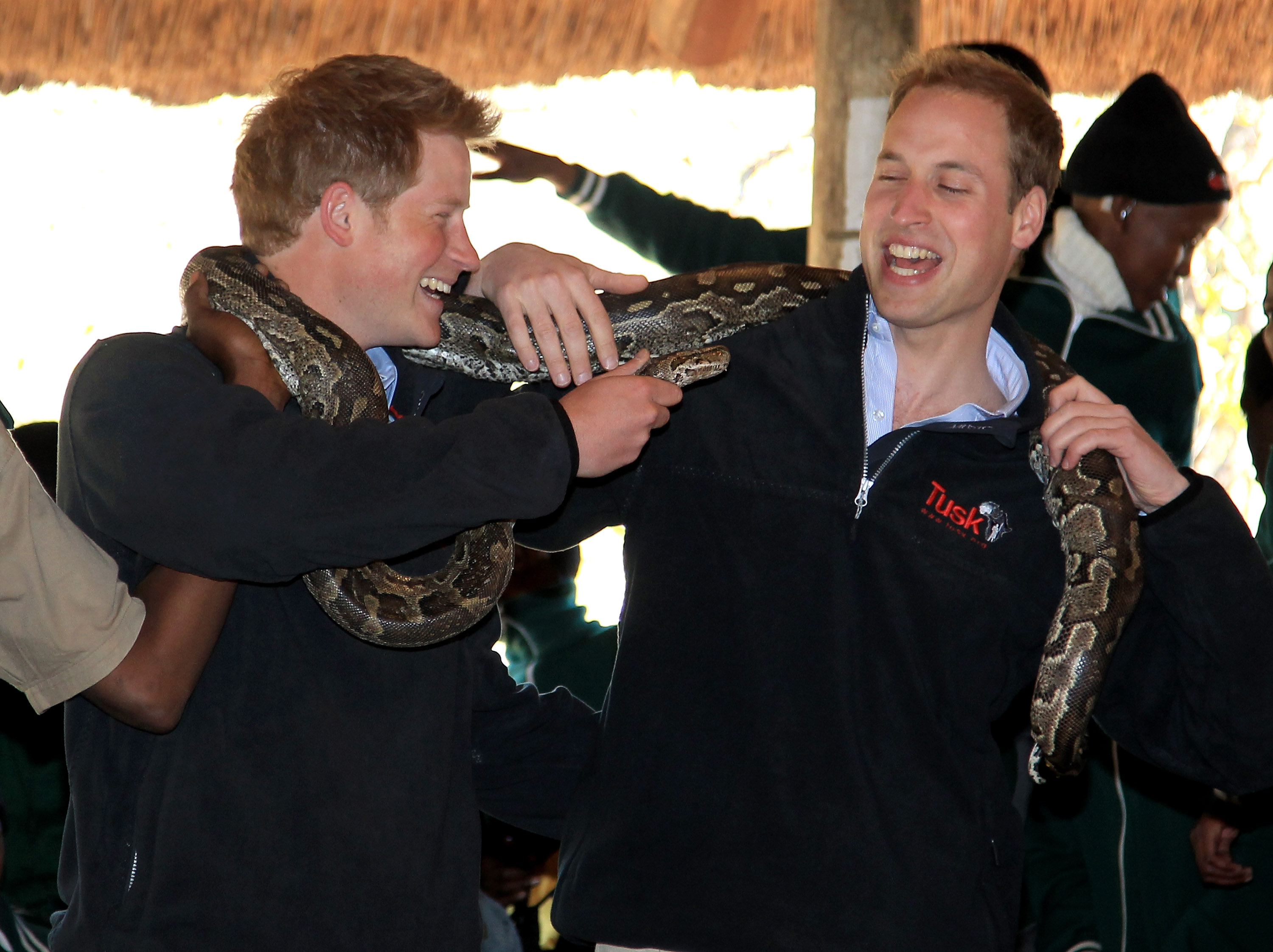 Prince Harry and Prince William (R) hold an African rock python during a visit to Mokolodi Education Centre on June 15, 2010 in Gaborone, Botswana.