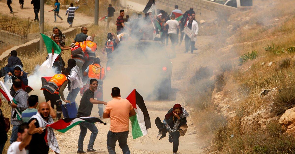 Palestine Struggle For Independence