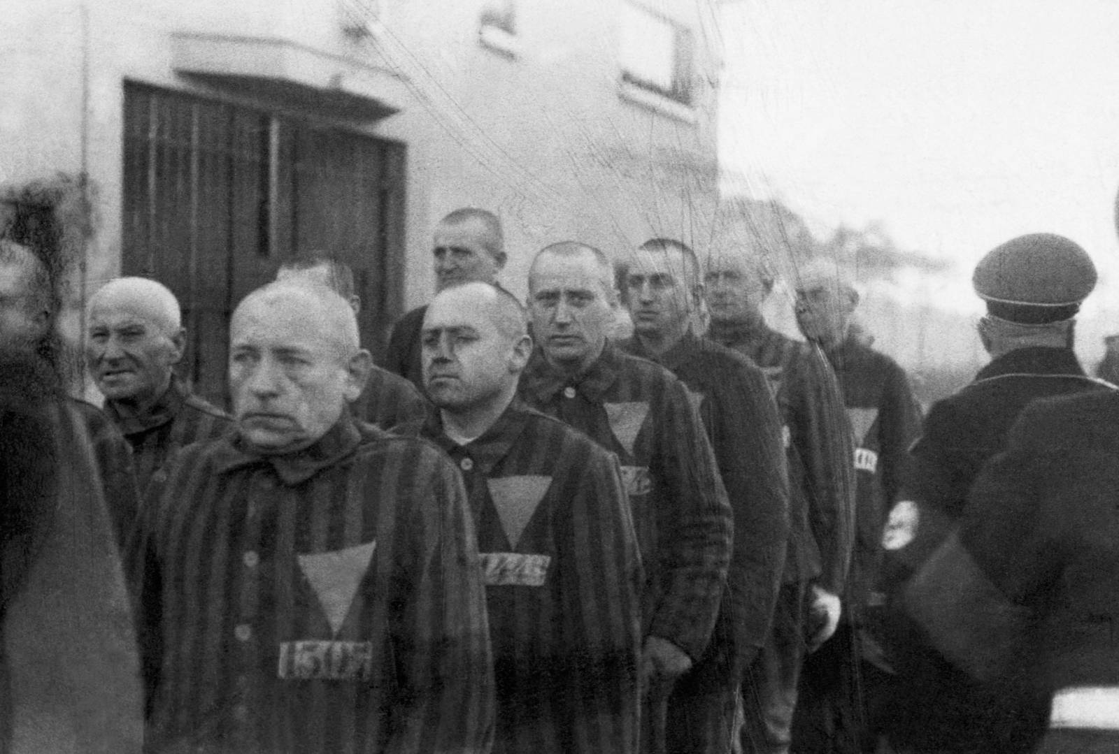 Prigionieri dei campi di concentramento che indossano triangoli rosa sulle uniformi e marciano scortati dalle guardie in Germania nel 1938.