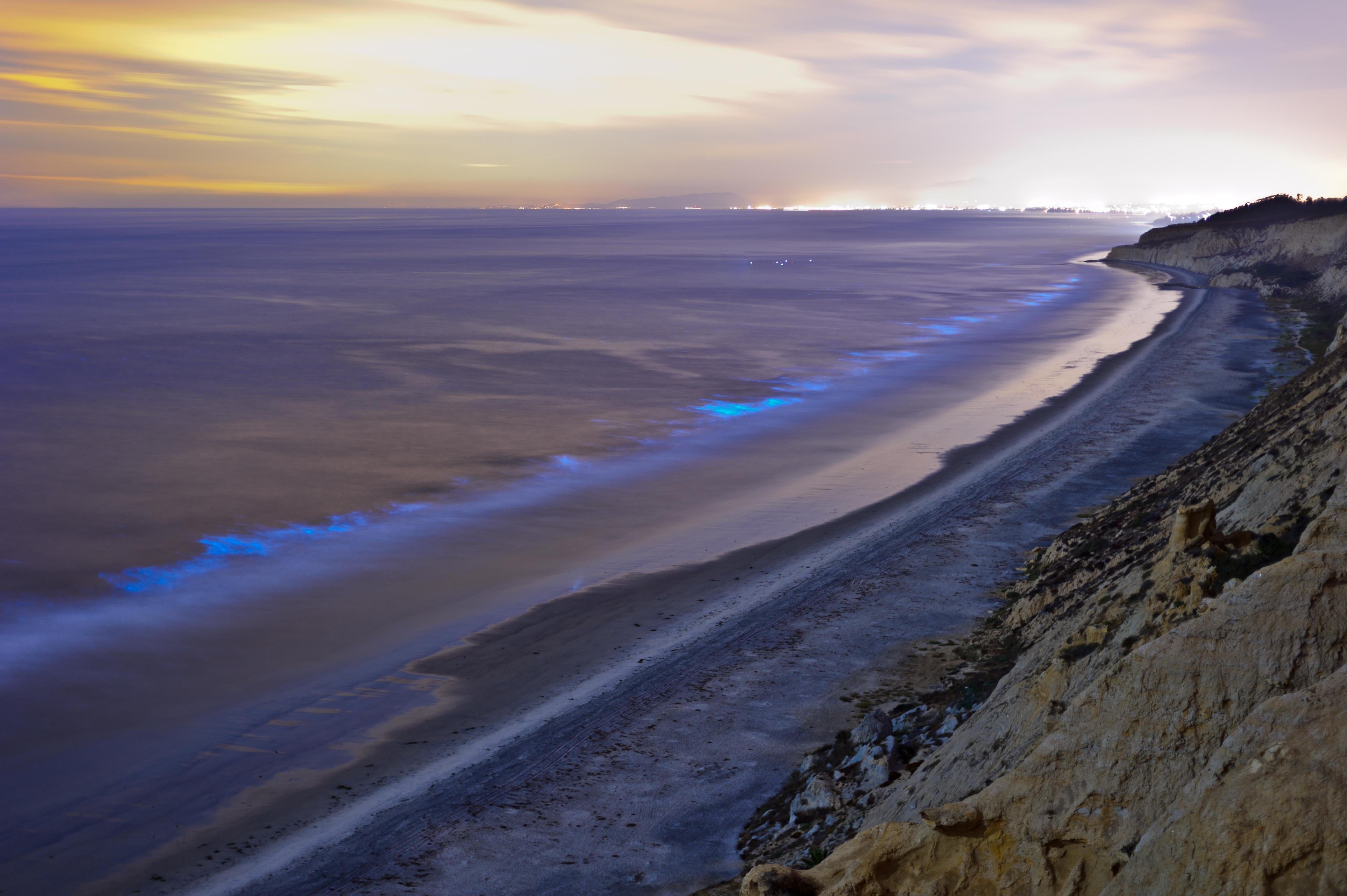 Coast of Torrey Pines State Beach, San Diego.