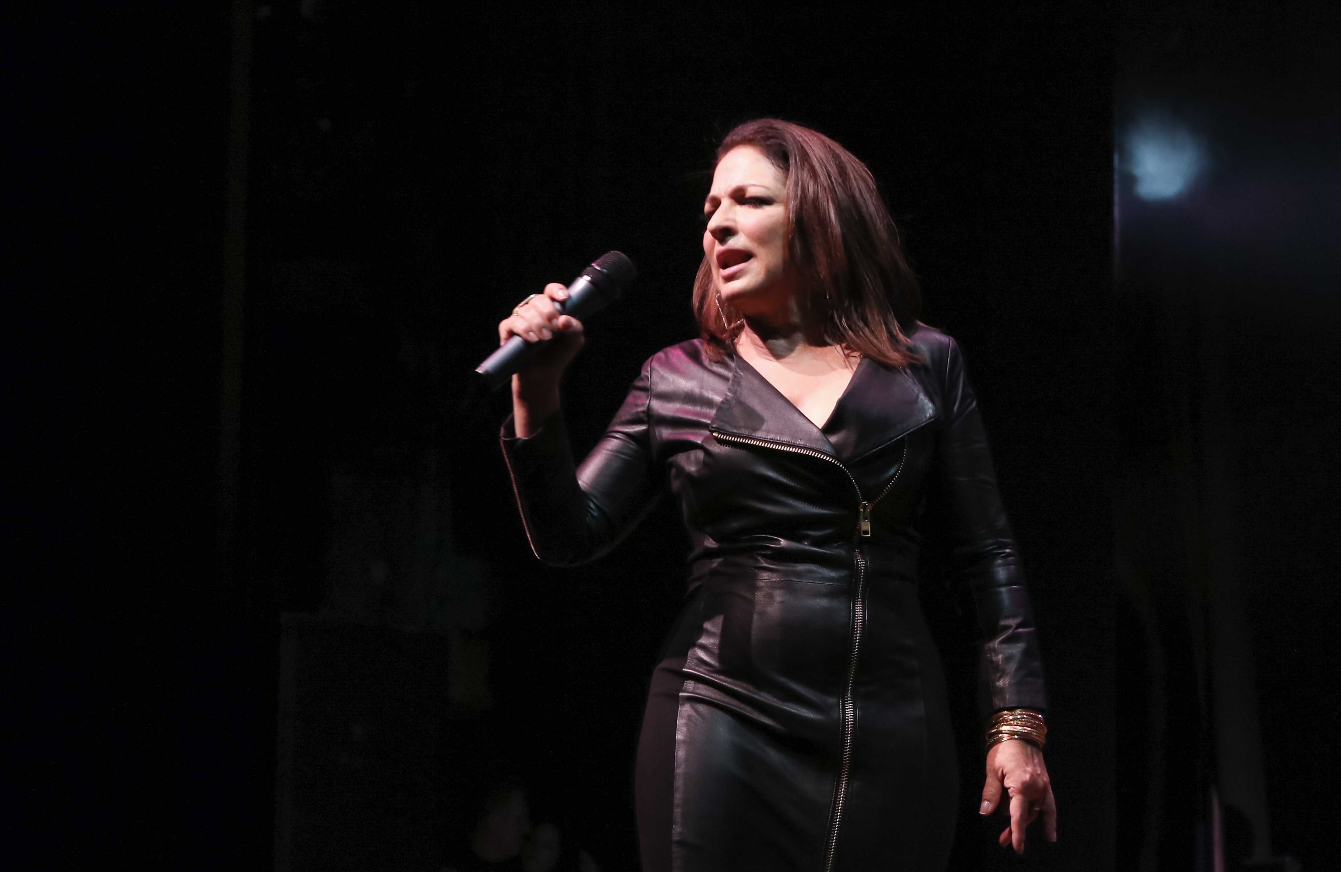 Gloria Estefan And Miami Sound Machine A Benefit Concert for Viva Broadway at Minskoff Theatre on September 14, 2015 in New York City.