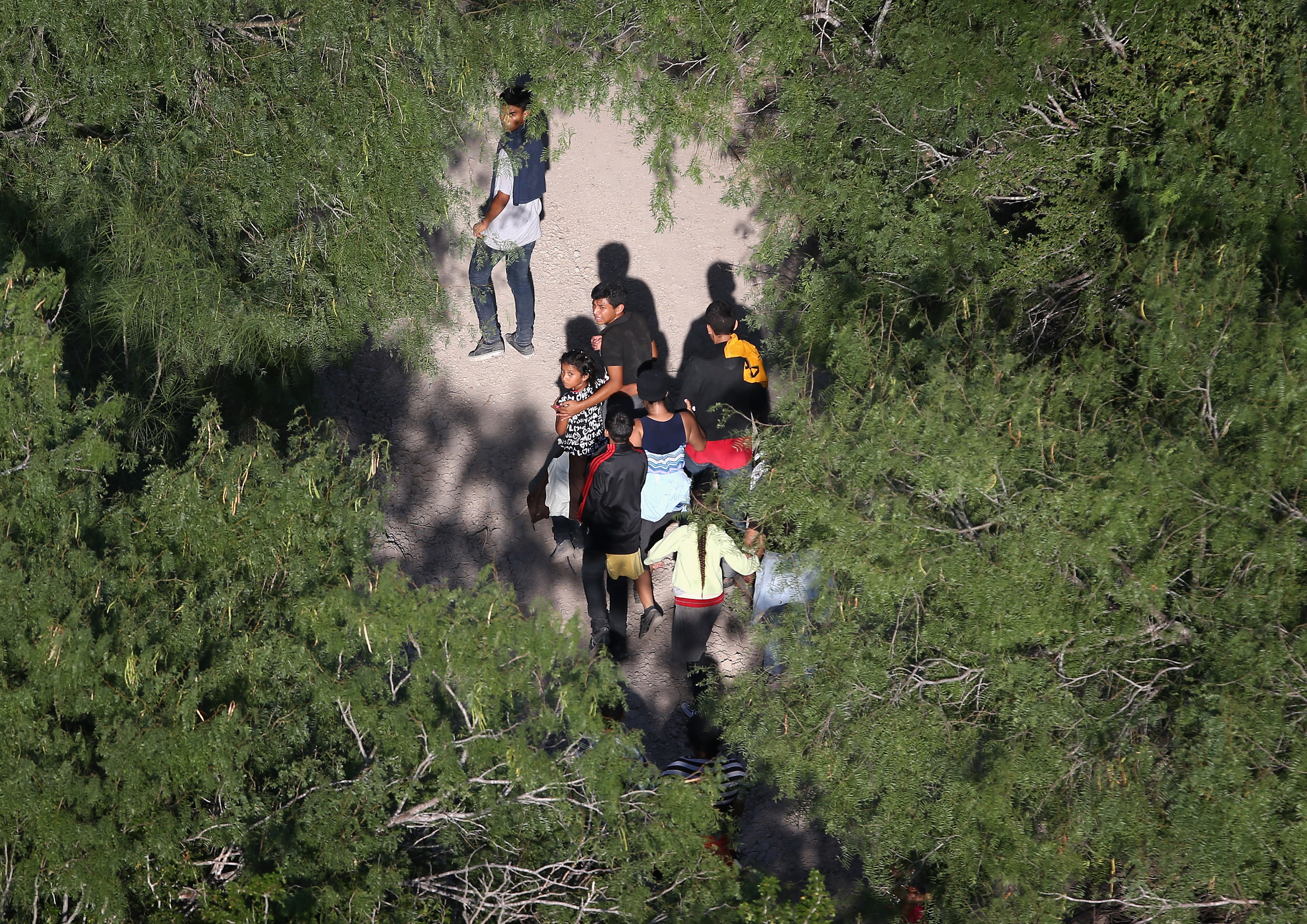 Undocumented immigrant families walk before being taken into custody by Border Patrol agents near McAllen, Texas on July 21, 2014.