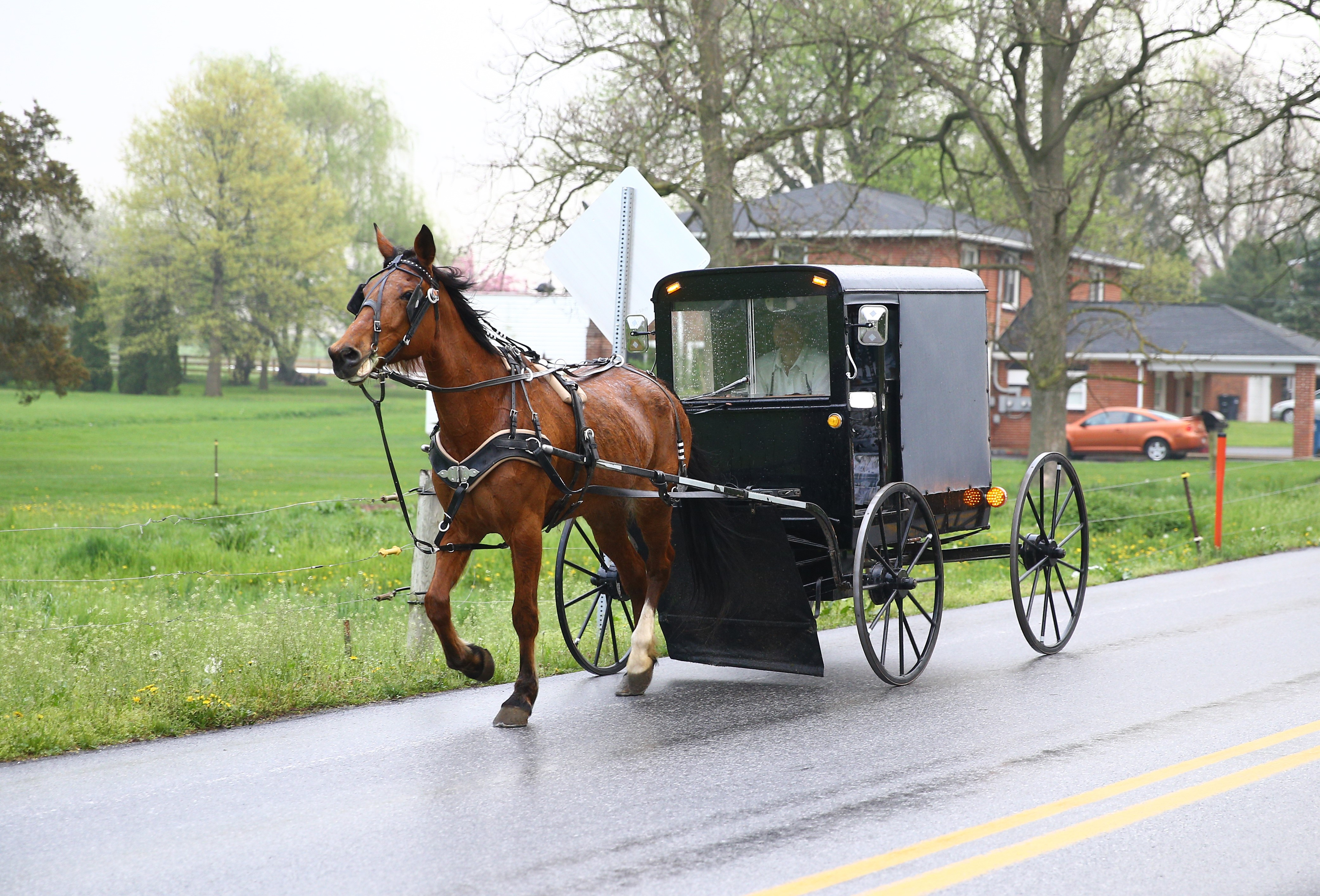 An Amish horse and a buggy are seen on the road in Central Pennsylvania, United States on April 30, 2017.