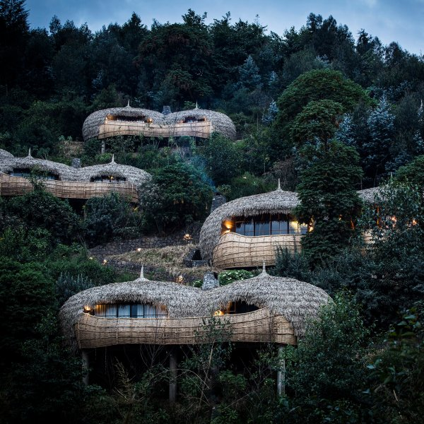 wilderness-safaris-bisate-lodge-volcanoes-national-park-rwanda