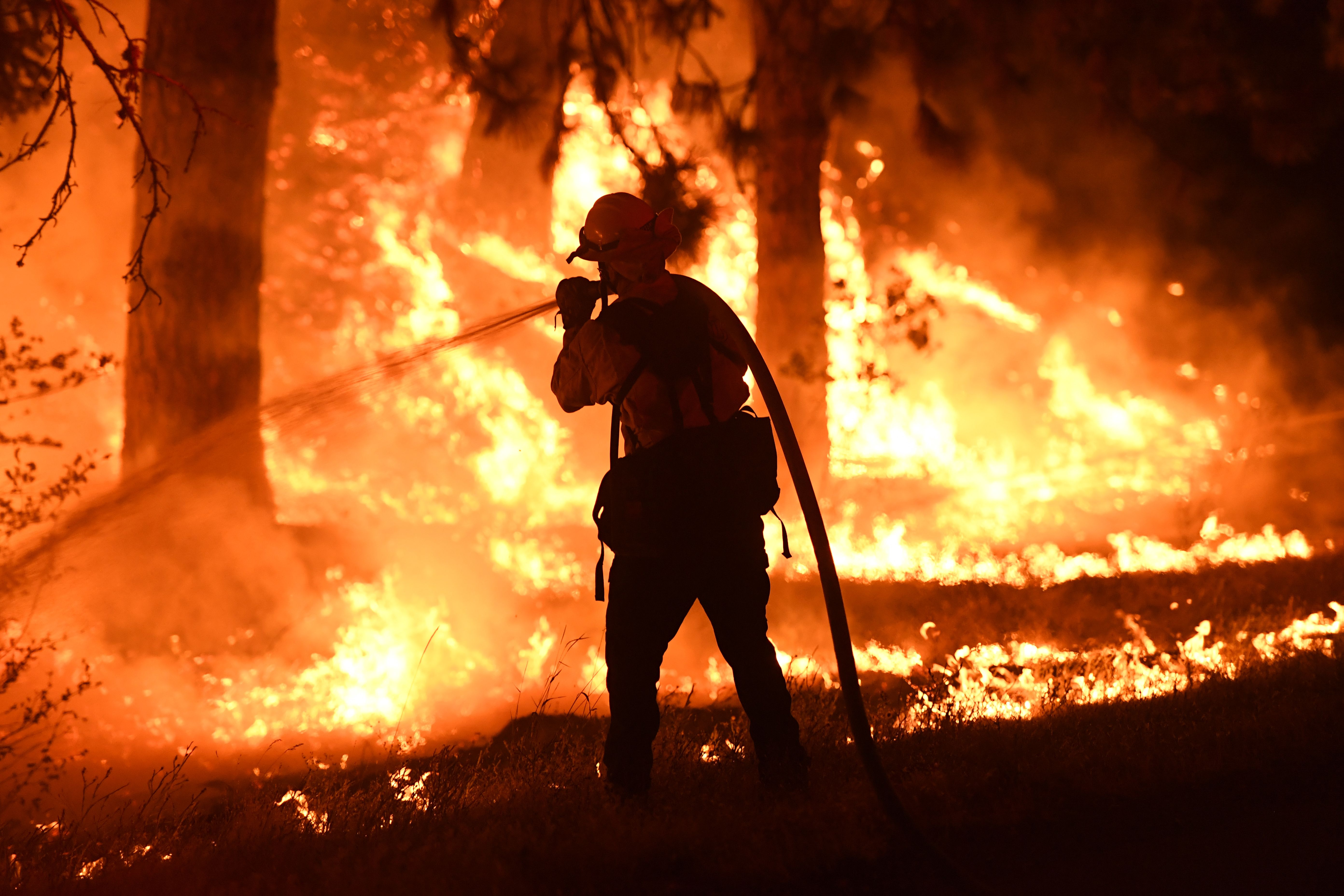 JULY 31 - A firefighter tries to control a back burn as the Carr fire continues to spread towards the towns of Douglas City and Lewiston near Redding, California