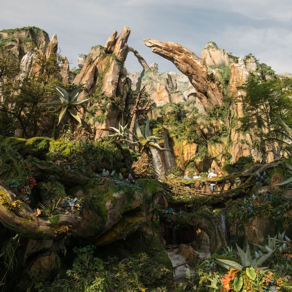 pandora-the-world-of-avatar-bay-lake-florida