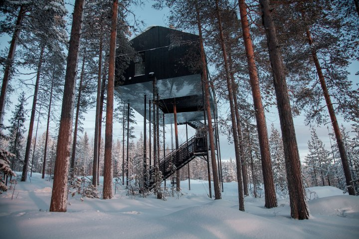An exterior view of the Treehotel in Sweden