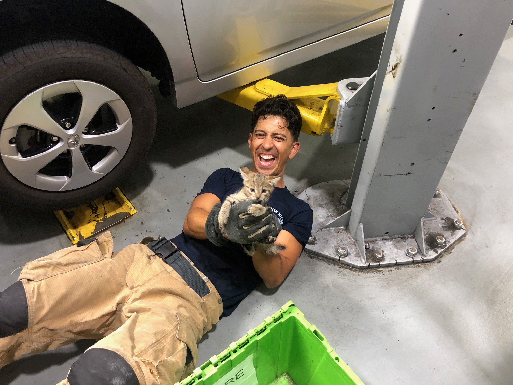 Firefighters Save Kitten That Survived 385-Mile Road Trip Trapped in a Car Engine