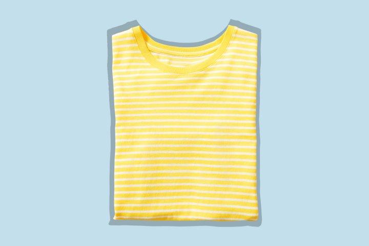 everlane tshirt