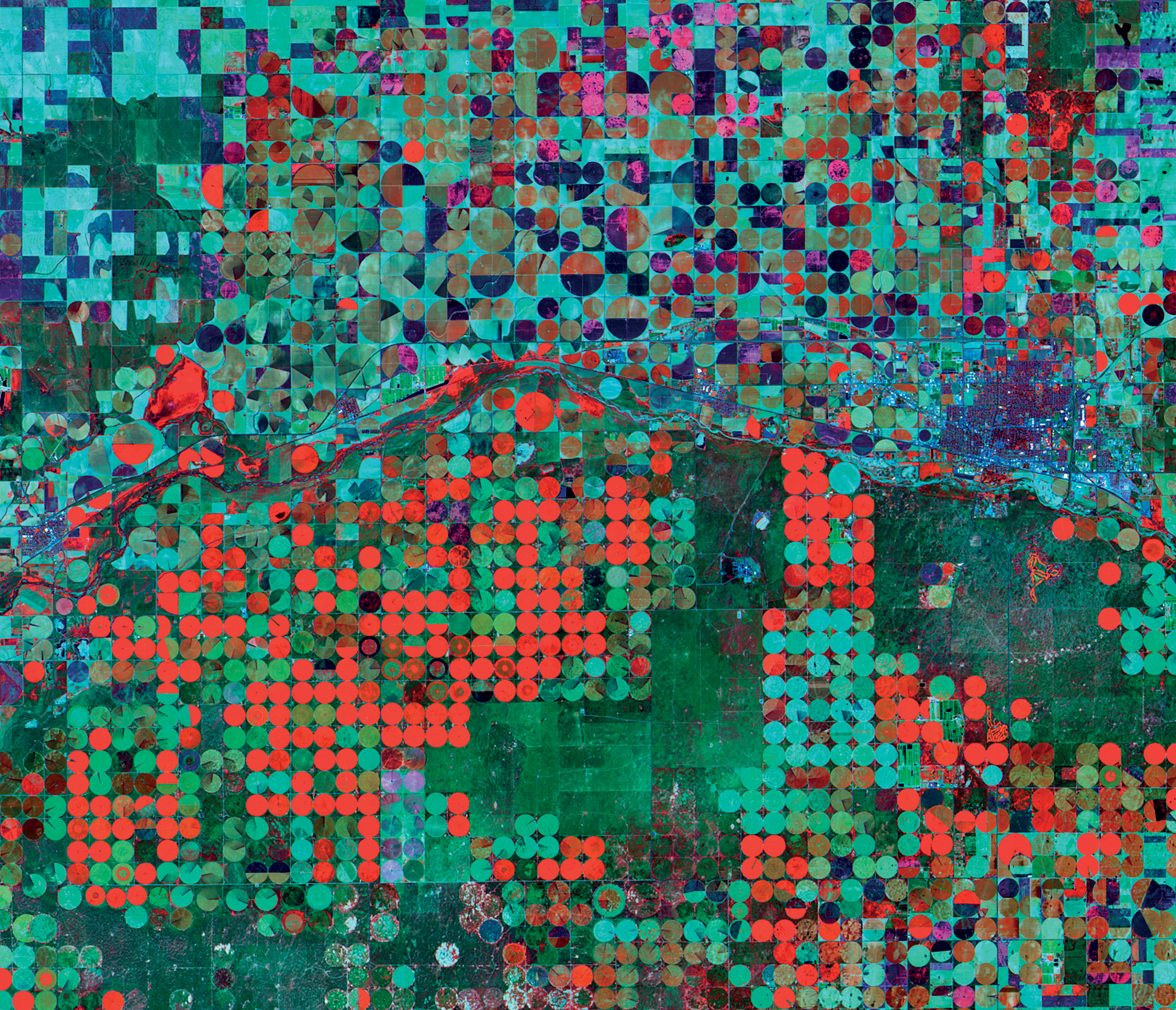"Garden City, Kansas, U.S. 1:202,000 Frank Zyback, a farmer from Colorado, invented ""center-pivot"" or circular irrigation in the 1940s, to provide efficient irrigation of croplands. This image captures different growth stages, water content, crop types and vegetation health of these circular plots. Less dense, newly planted crops, for example, appear in a brownish green north of the river horizontally bisecting the image."