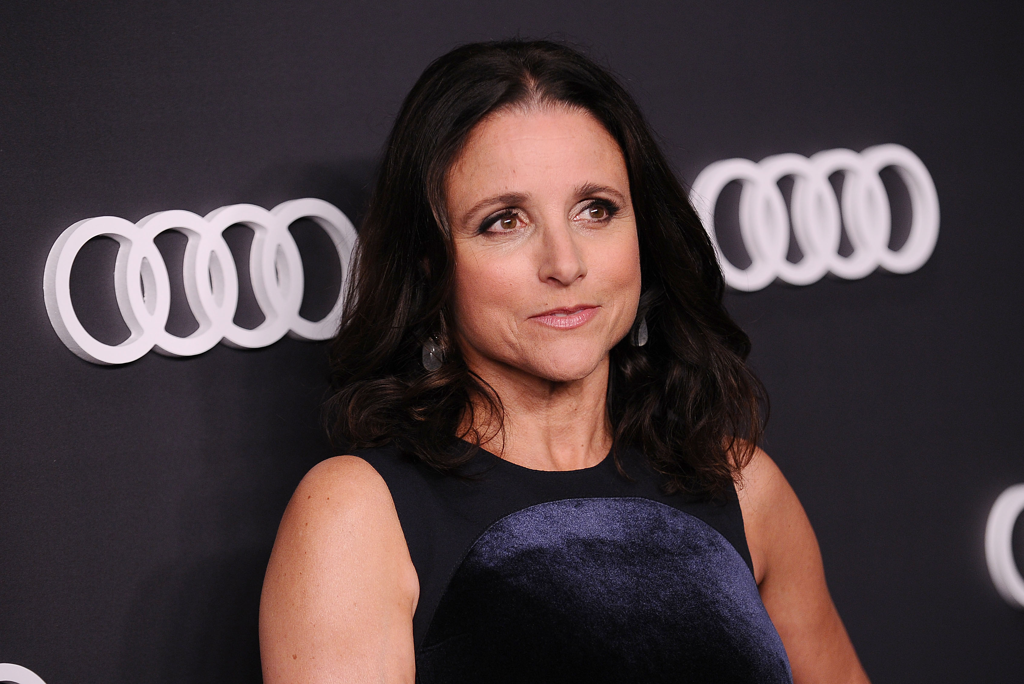 Actress Julia Louis-Dreyfus attends the Audi celebration for the 69th Emmys at The Highlight Room at the Dream Hollywood on September 14, 2017 in Hollywood, California.