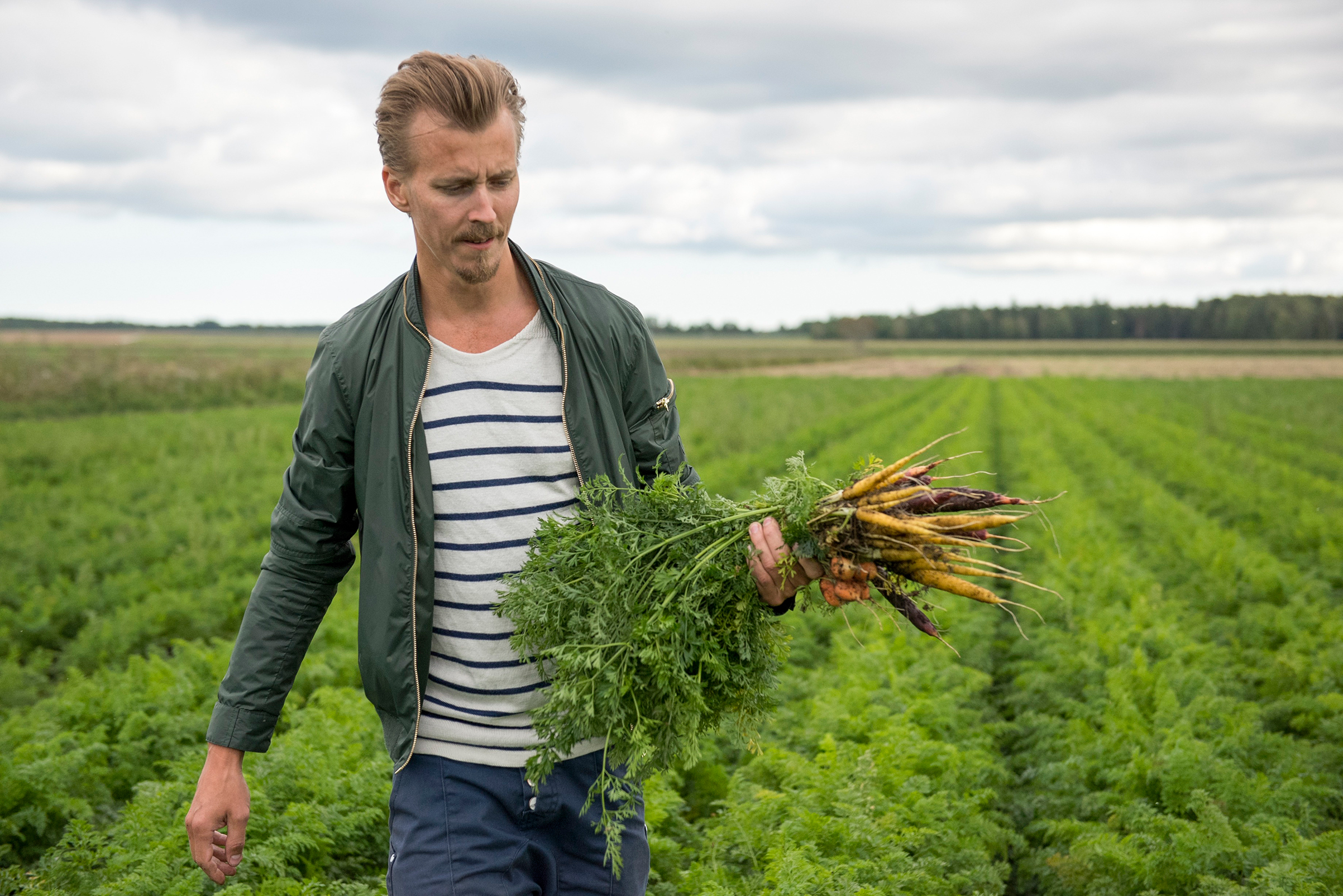 Svensson wants to raise the status of vegetables