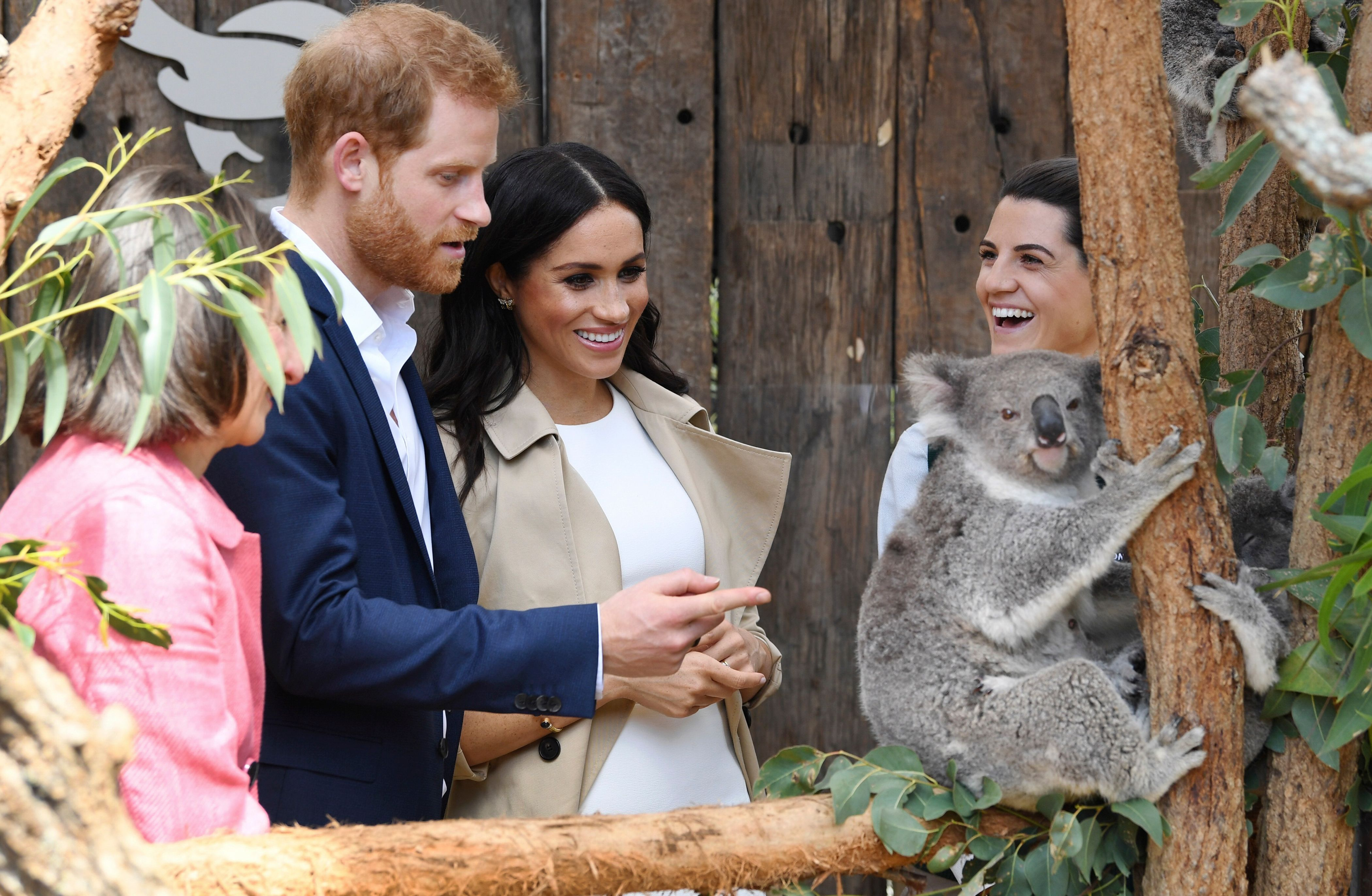 Britain's Prince Harry and his wife Meghan meet koalas named Ruby and Meghan at Taronga Zoo in Sydney, Australia on Oct. 16, 2018.